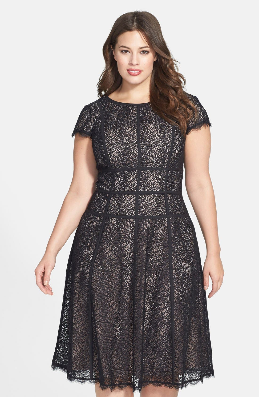 Alternate Image 1 Selected - Adrianna Papell 'Converging' Banded Lace Dress (Plus Size)