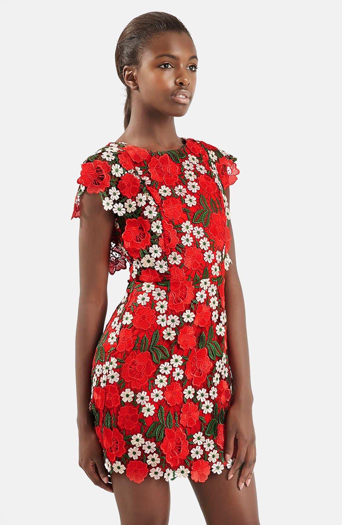 Alternate Image 5  - Topshop Floral Lace A-Line Dress