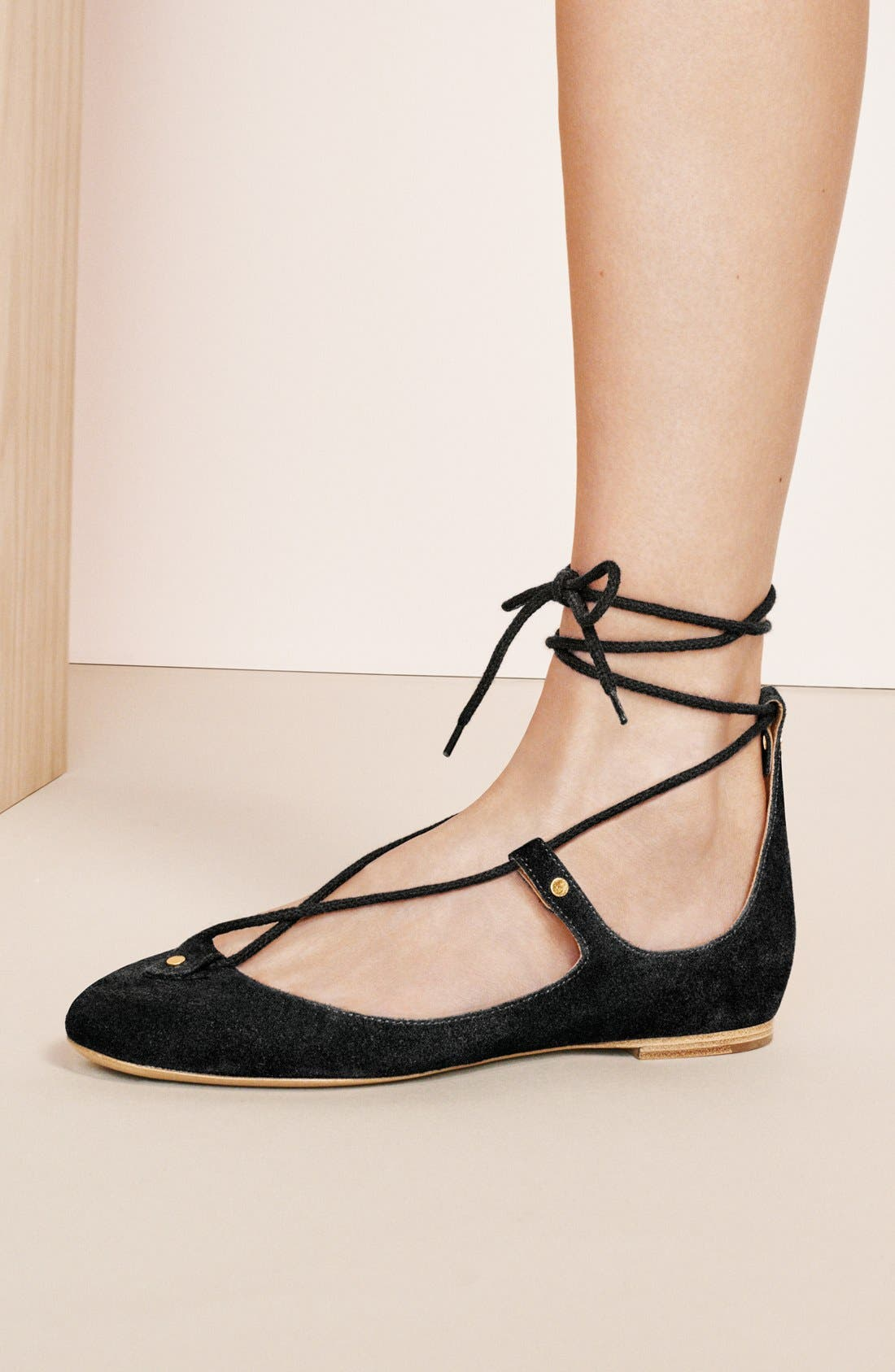 Alternate Image 5  - Chloé 'Foster' Lace-Up Ballet Flat (Women)