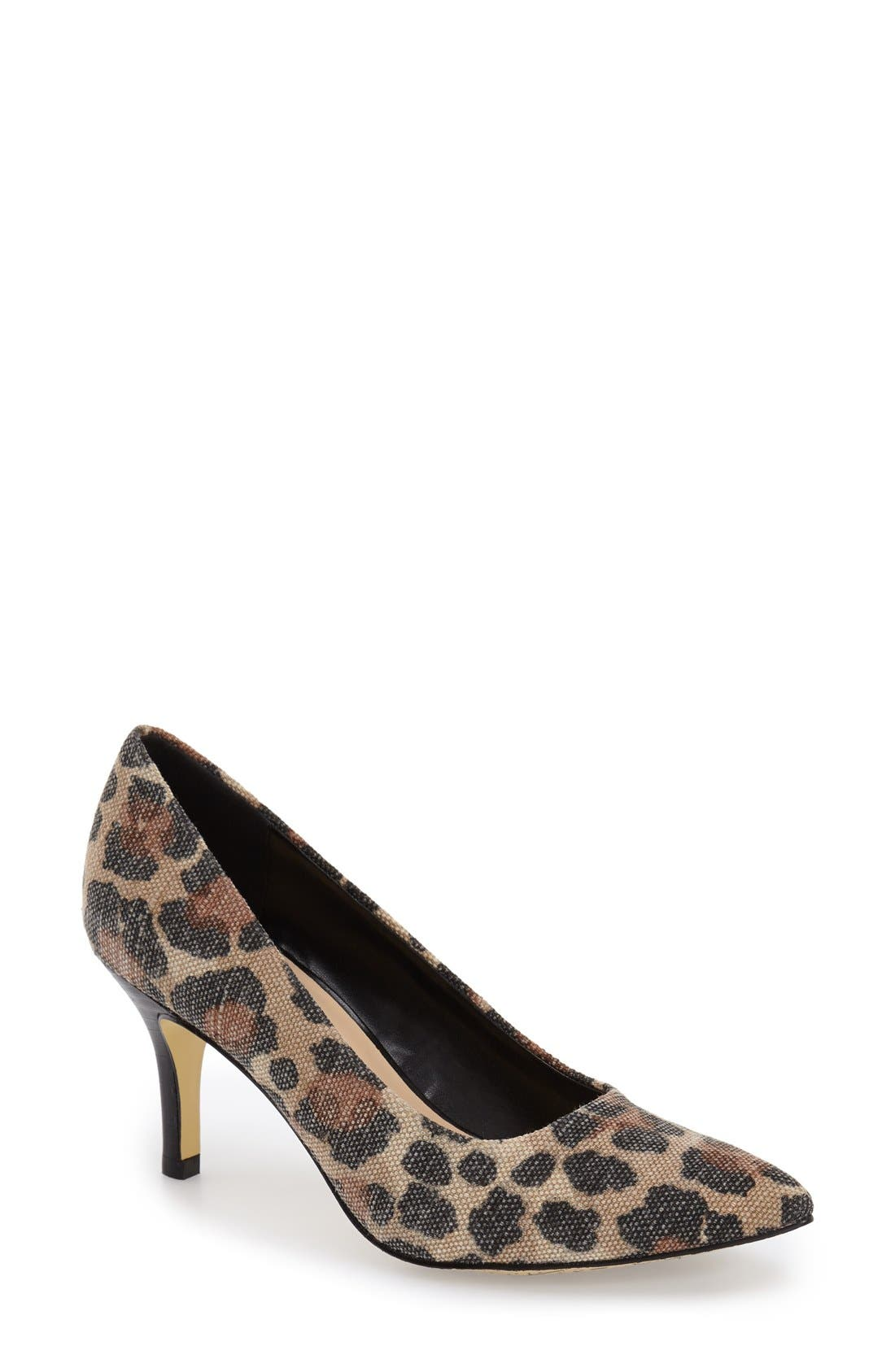 'Define' Pointy Toe Pump,                         Main,                         color, Leopard