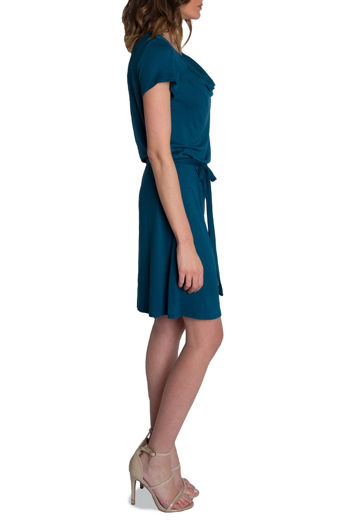'Chic' Cowl Neck Nursing Dress,                             Alternate thumbnail 3, color,                             Teal