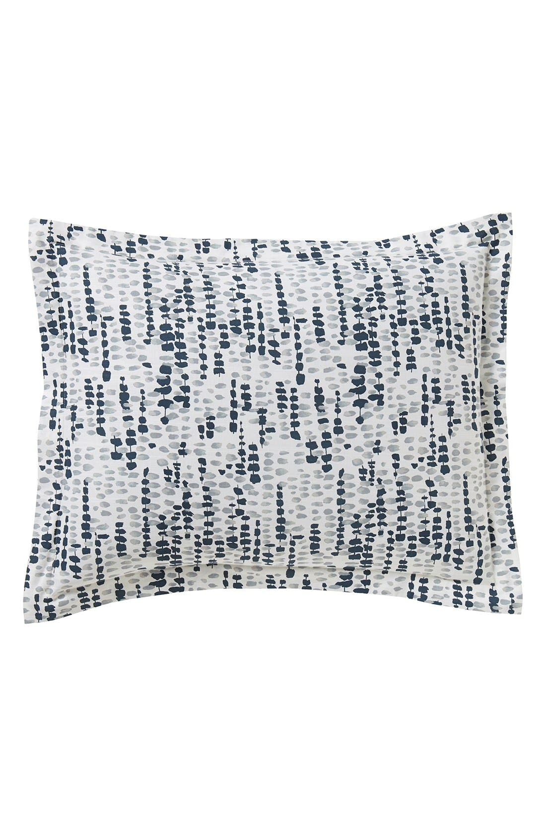 Alternate Image 1 Selected - DwellStudio 'Lucienne' Shams (Set of 2)
