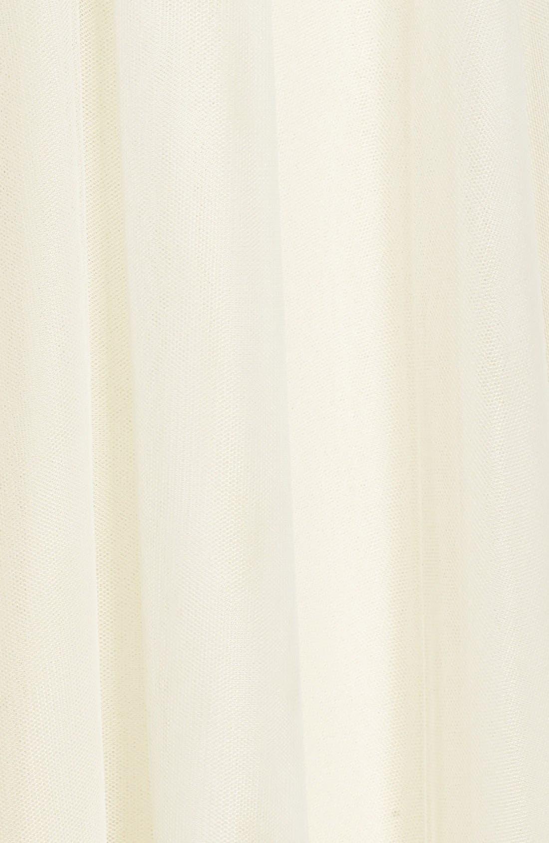 Alternate Image 6  - Jenny Yoo 'Hannah' Full Tulle Skirt