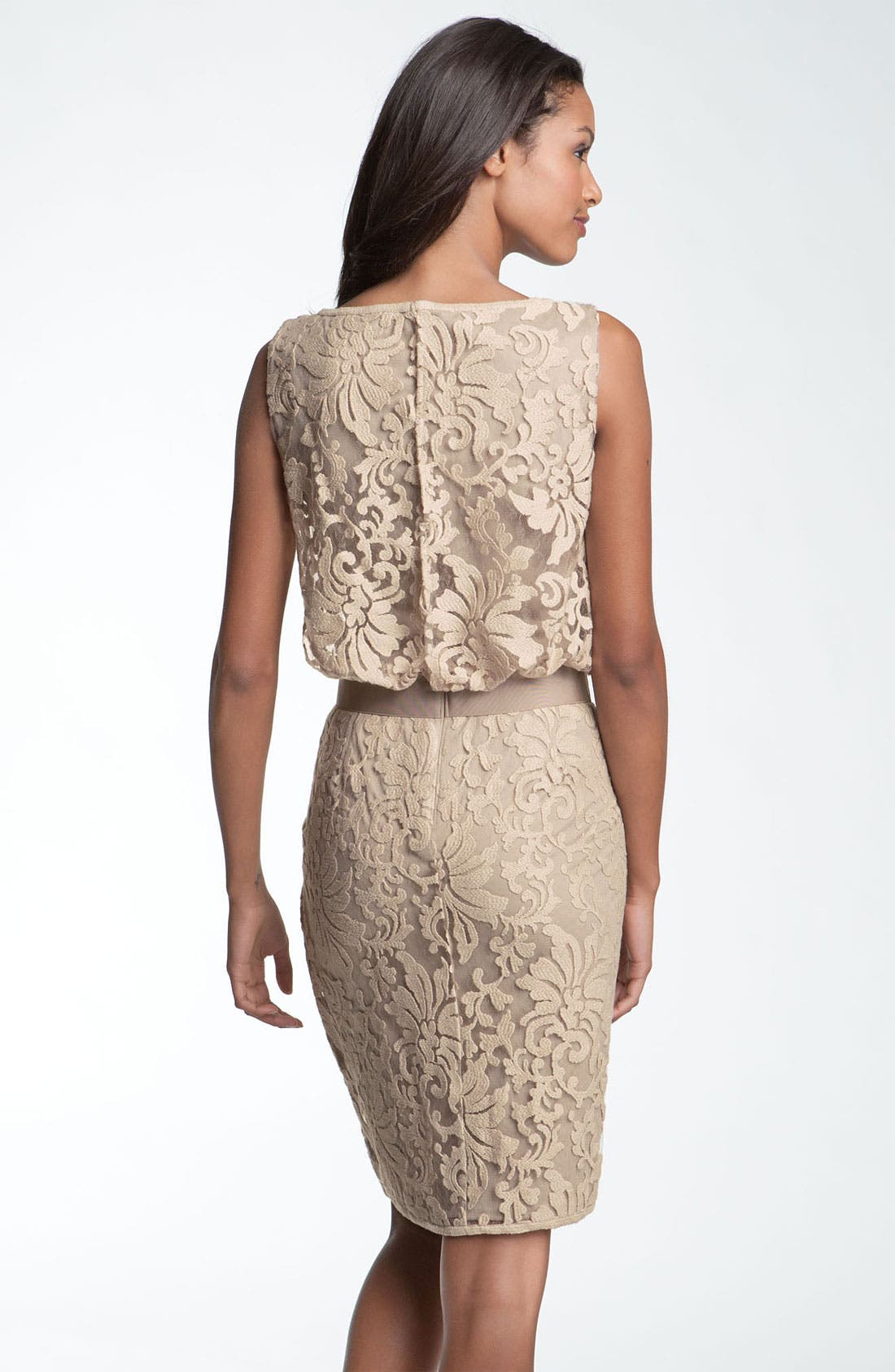 Alternate Image 2  - Tadashi Shoji Lace Overlay Ribbon Dress
