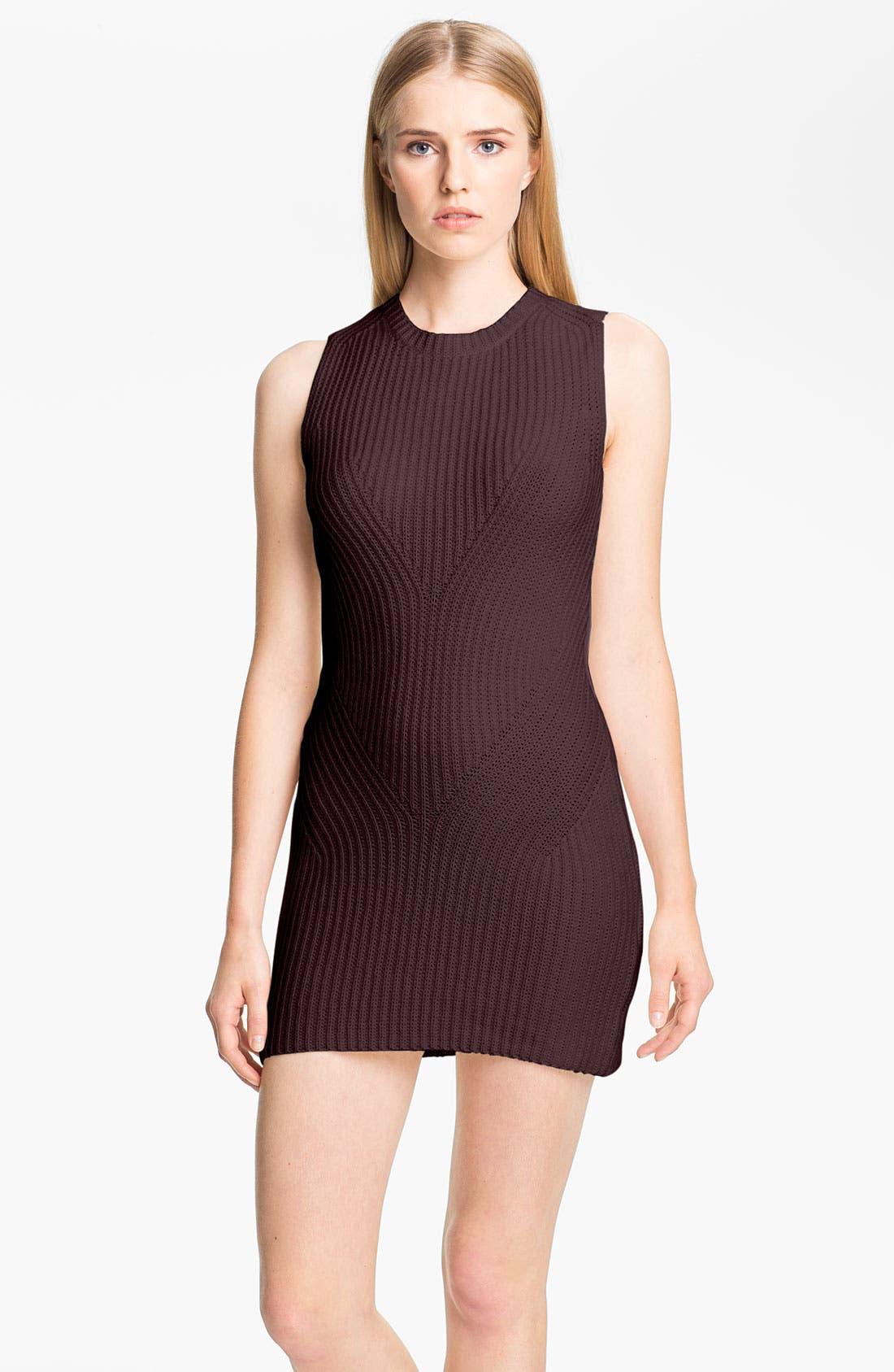 Main Image - Theyskens' Theory 'Keiro Yara' Knit Tunic Dress
