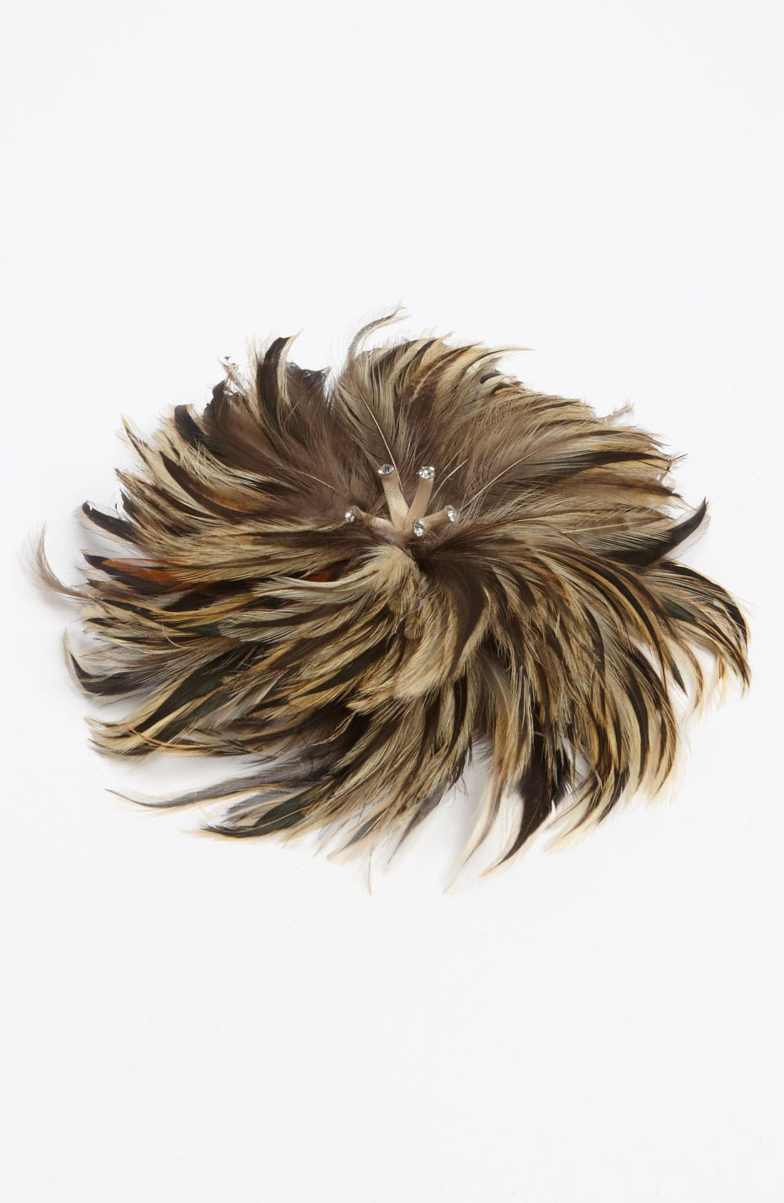 Main Image - Tasha 'Poison Feather' Hair Clip