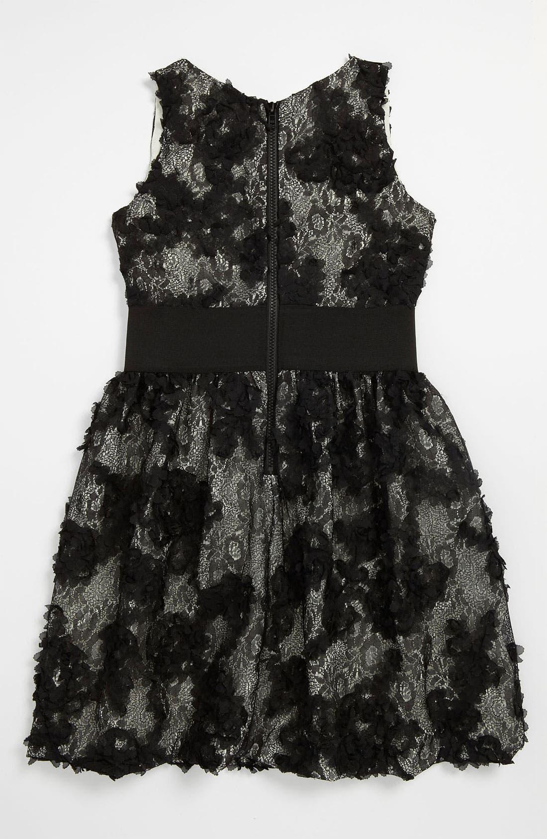 Alternate Image 2  - Zoe Ltd Textured Lace Dress (Big Girls)