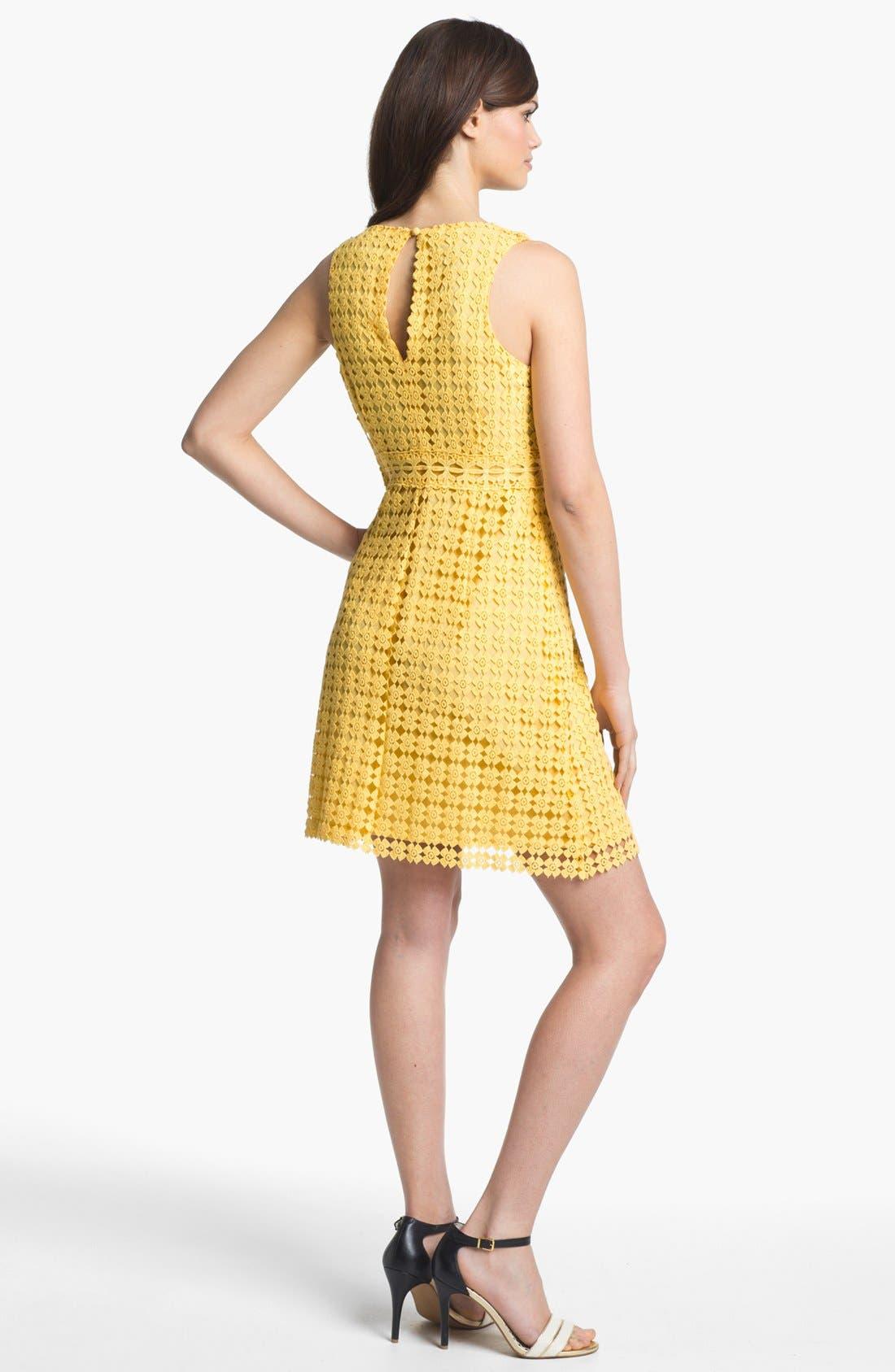Alternate Image 2  - Laundry by Shelli Segal Sleeveless Lace Cotton Dress