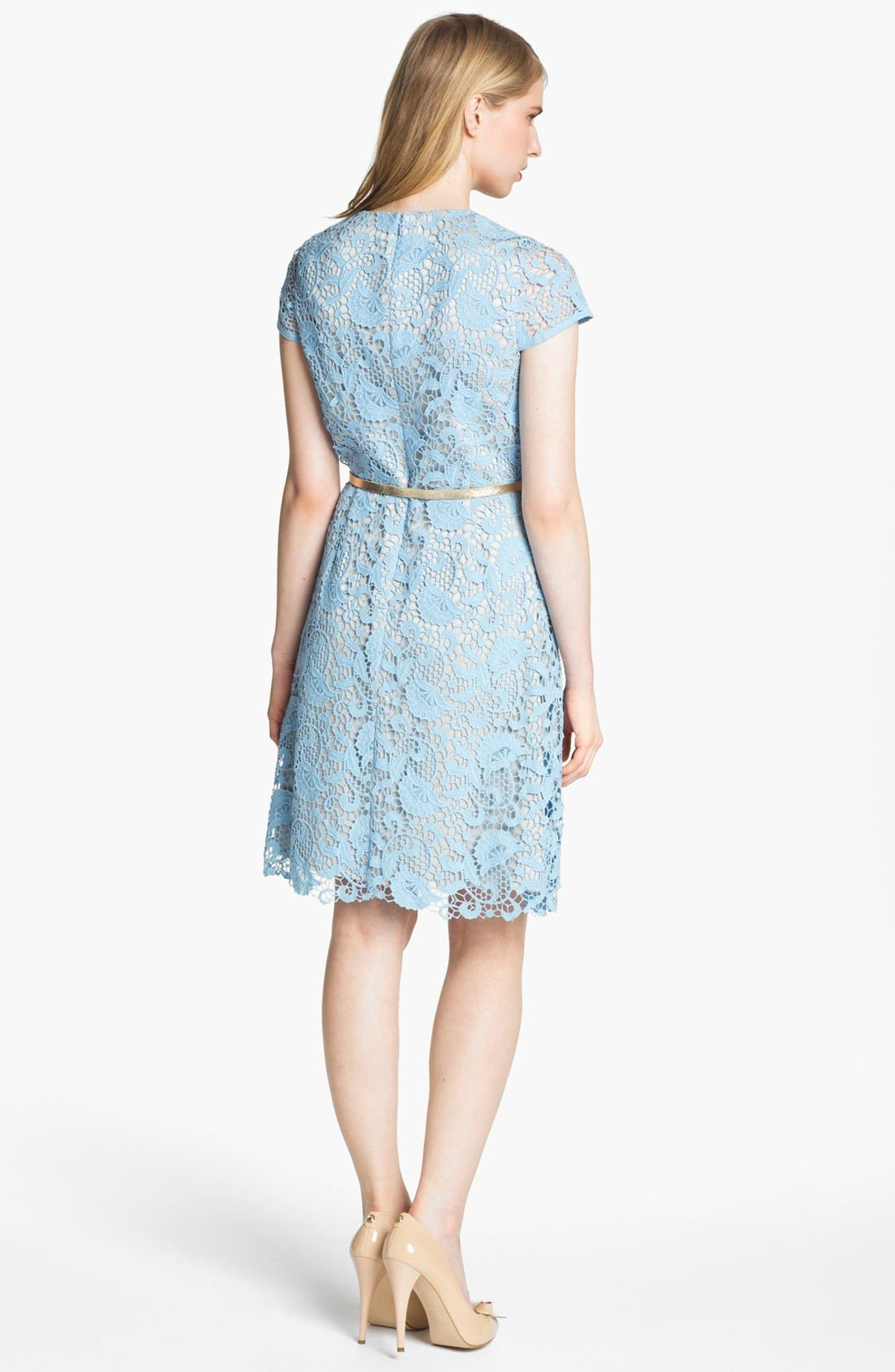 Alternate Image 2  - Eliza J Belted Cotton Lace Dress