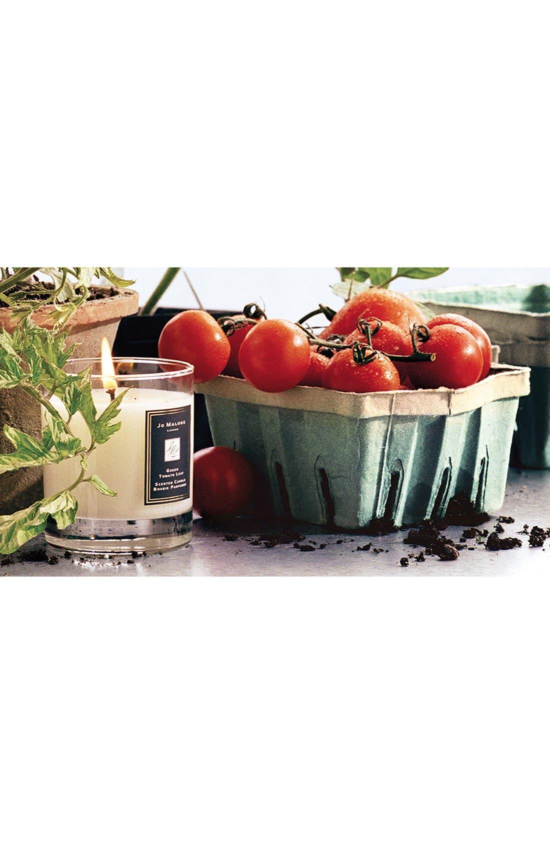 Alternate Image 3  - Jo Malone™ Just Like Sunday - Green Tomato Leaf Candle