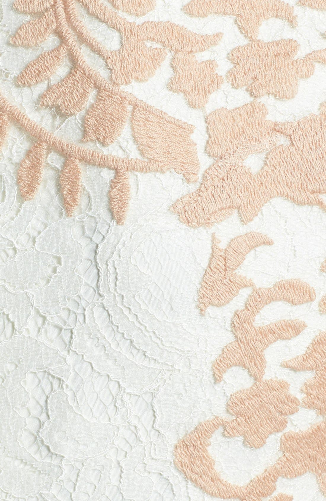 Alternate Image 4  - Tadashi Shoji Embroidered Detail Lace Sheath Dress