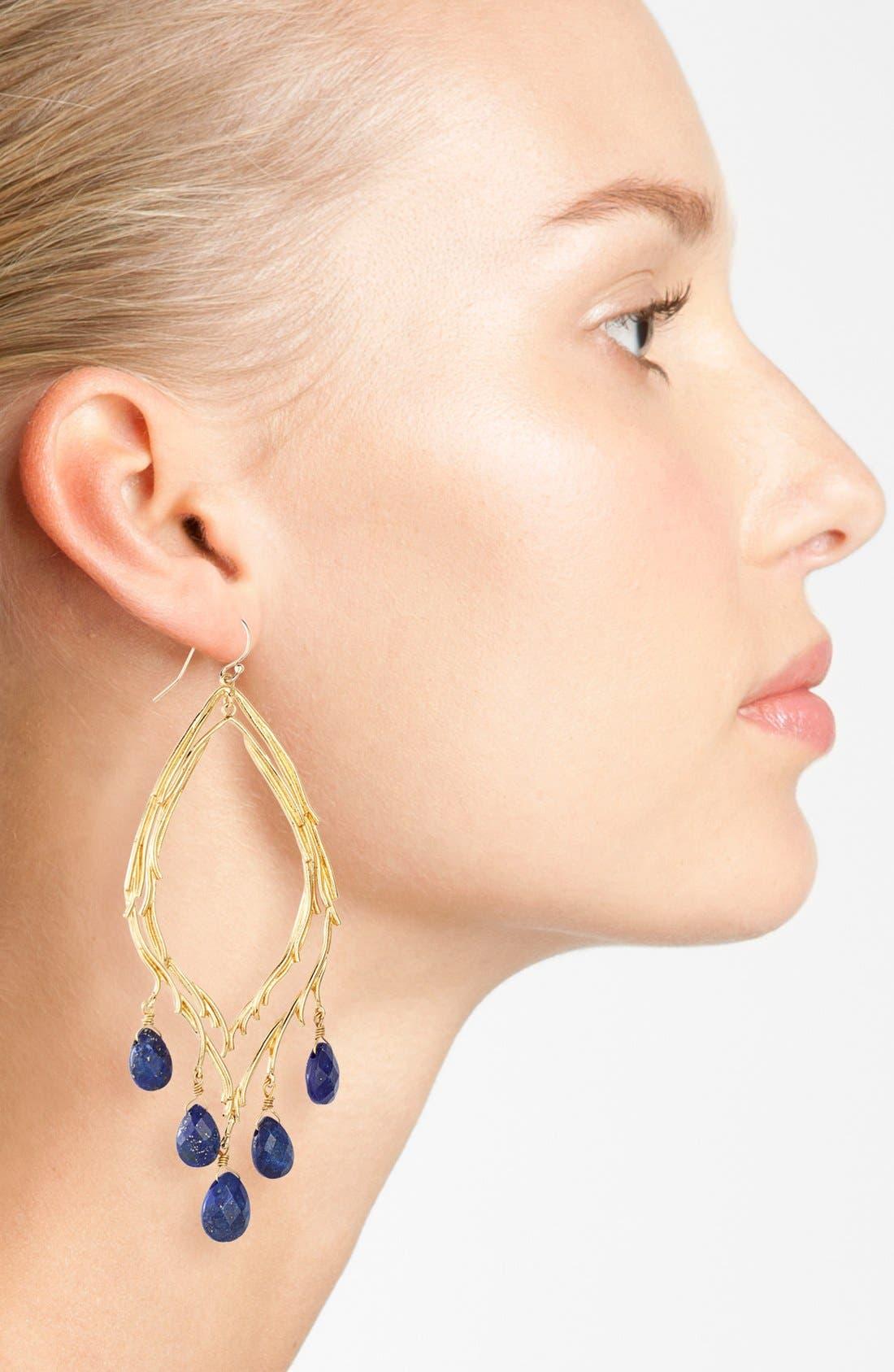 Alternate Image 2  - Alexis Bittar 'Elements - Maldivian' Feathered Stone Teardrop Orbiting Earrings