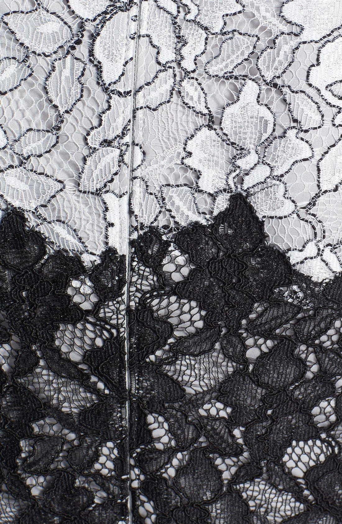 Alternate Image 4  - Tadashi Shoji Two-Tone Lace Sheath Dress