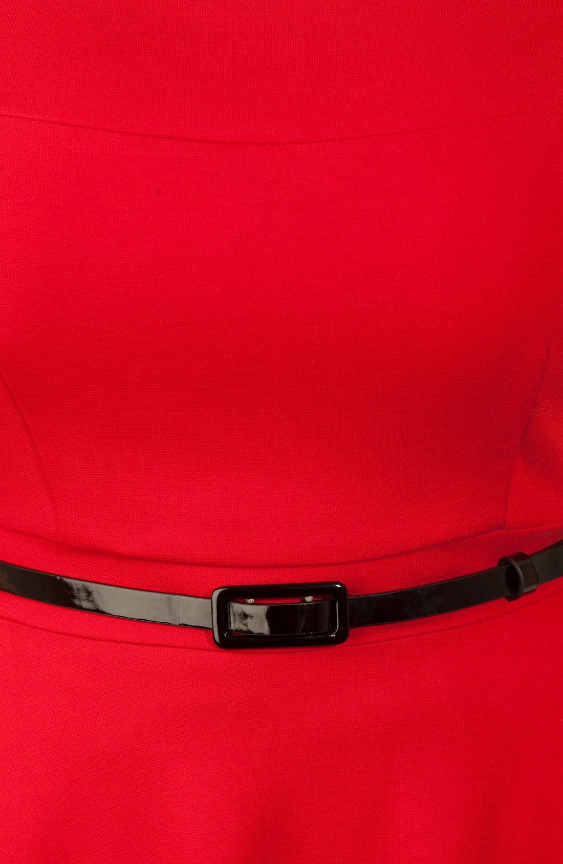 Alternate Image 3  - City Chic 'Bridgette' Belted Skater Dress (Plus Size)
