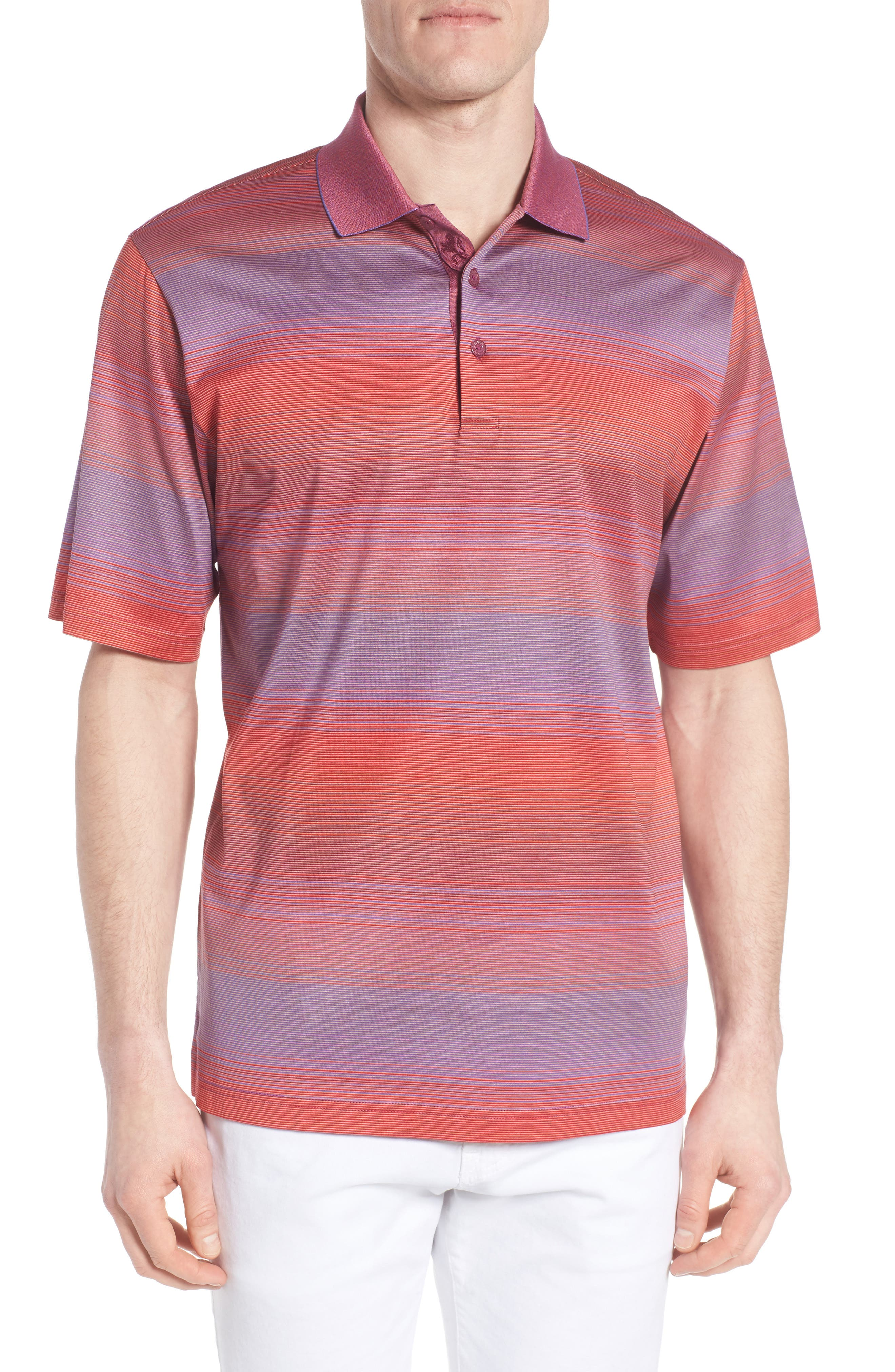 Stripe Jersey Polo,                         Main,                         color, Berry