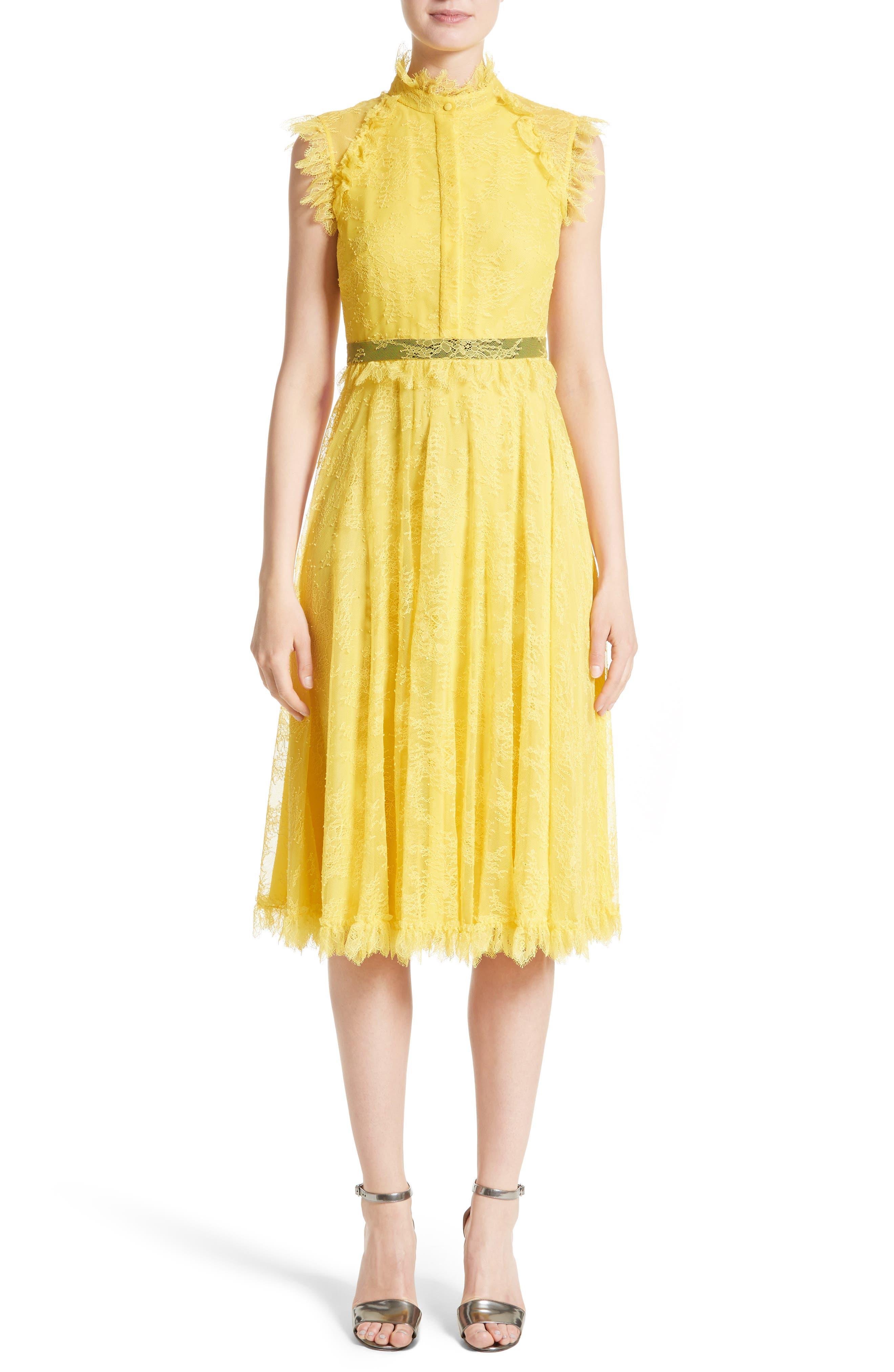 Alternate Image 1 Selected - Erdem Tulle Lace Dress