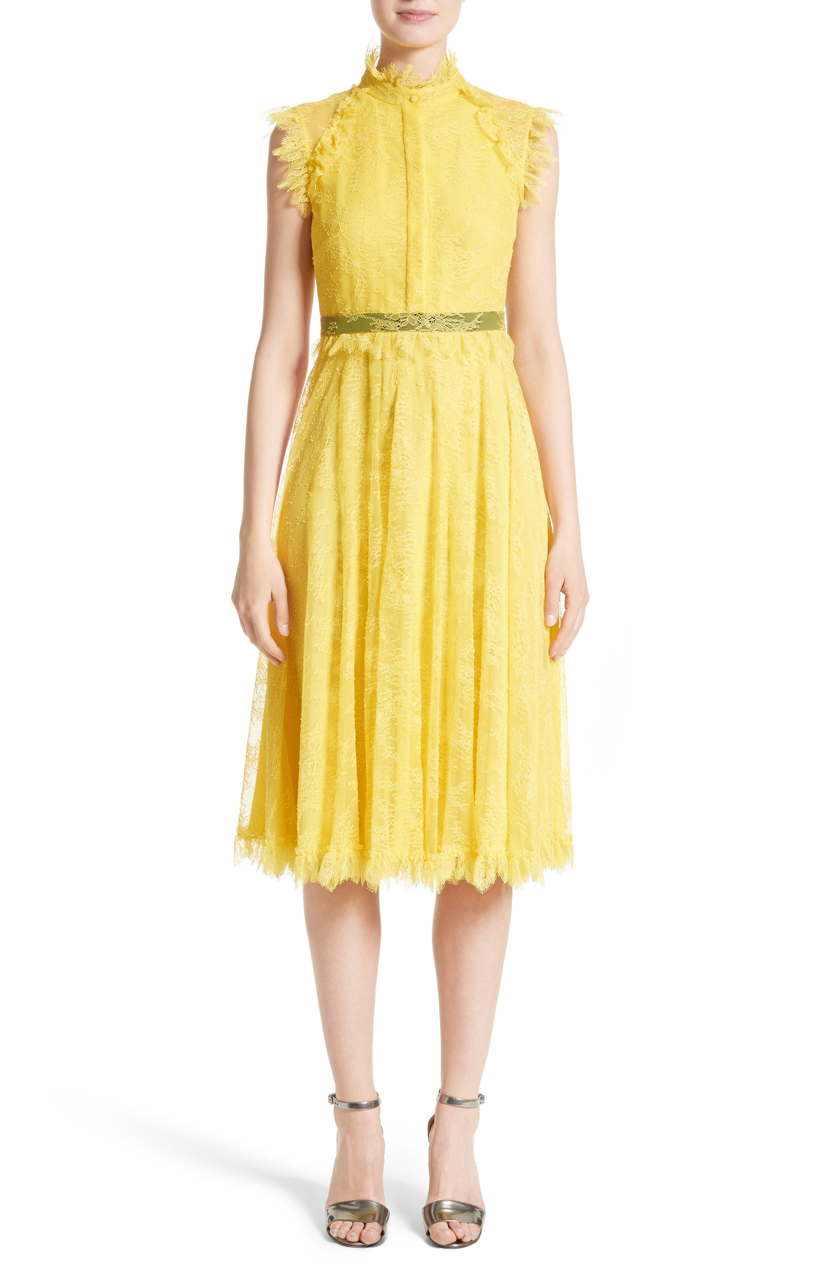Main Image - Erdem Tulle Lace Dress