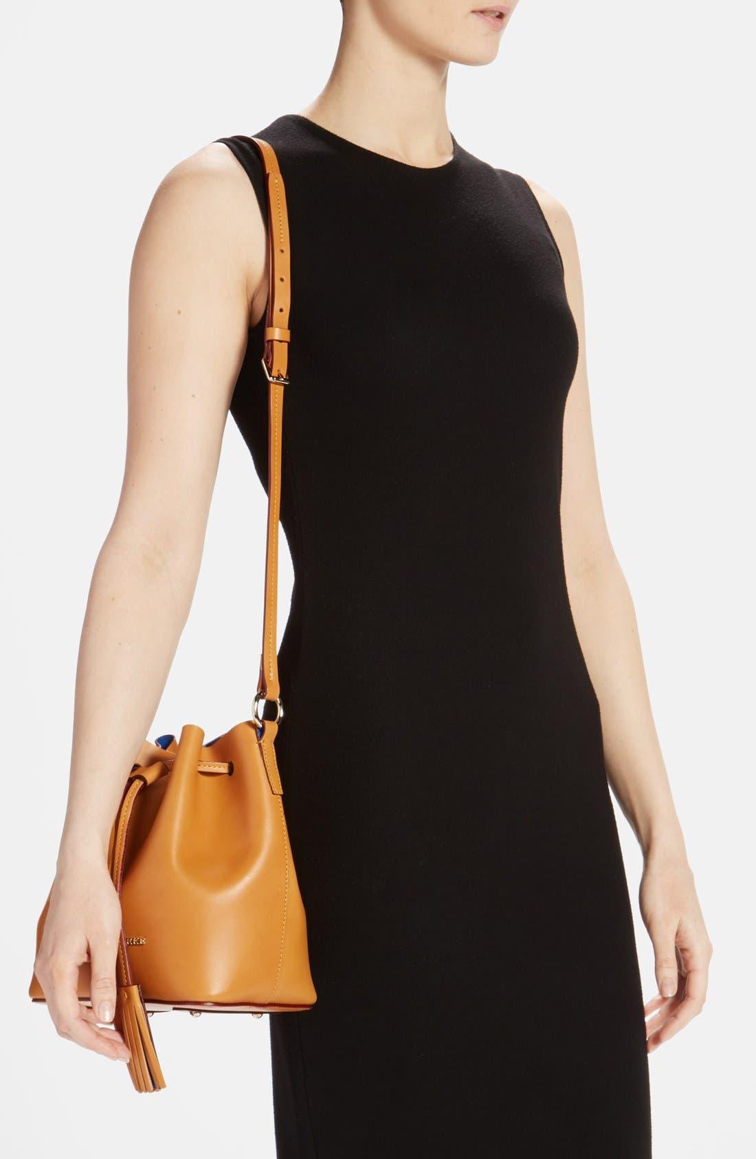 Alternate Image 2  - Dooney & Bourke 'Serena' Leather Bucket Bag