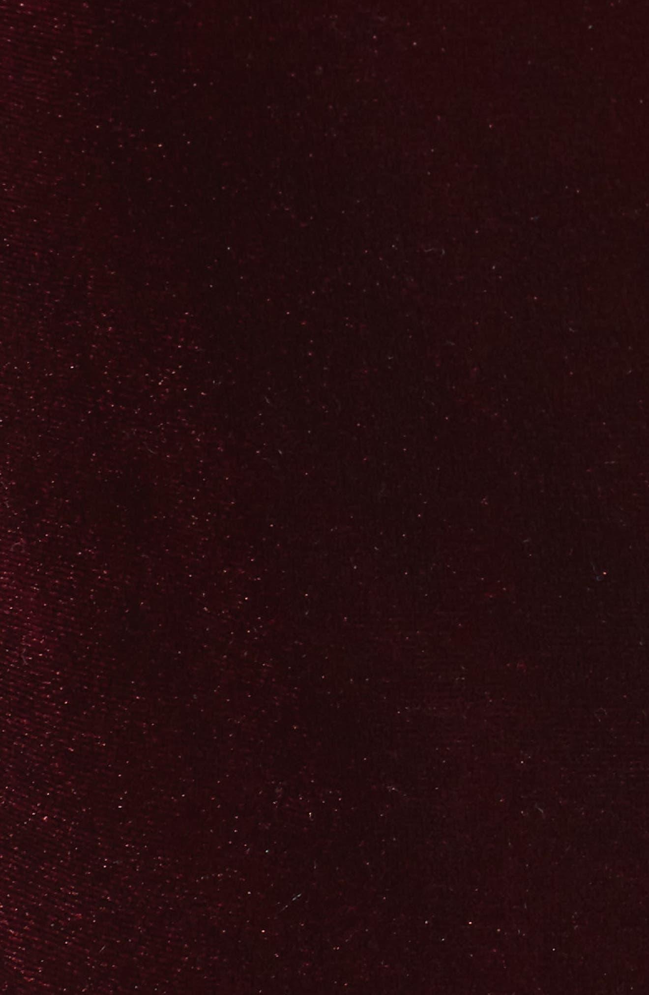 Lace Up Velvet Bodysuit,                             Alternate thumbnail 5, color,                             Burgundy
