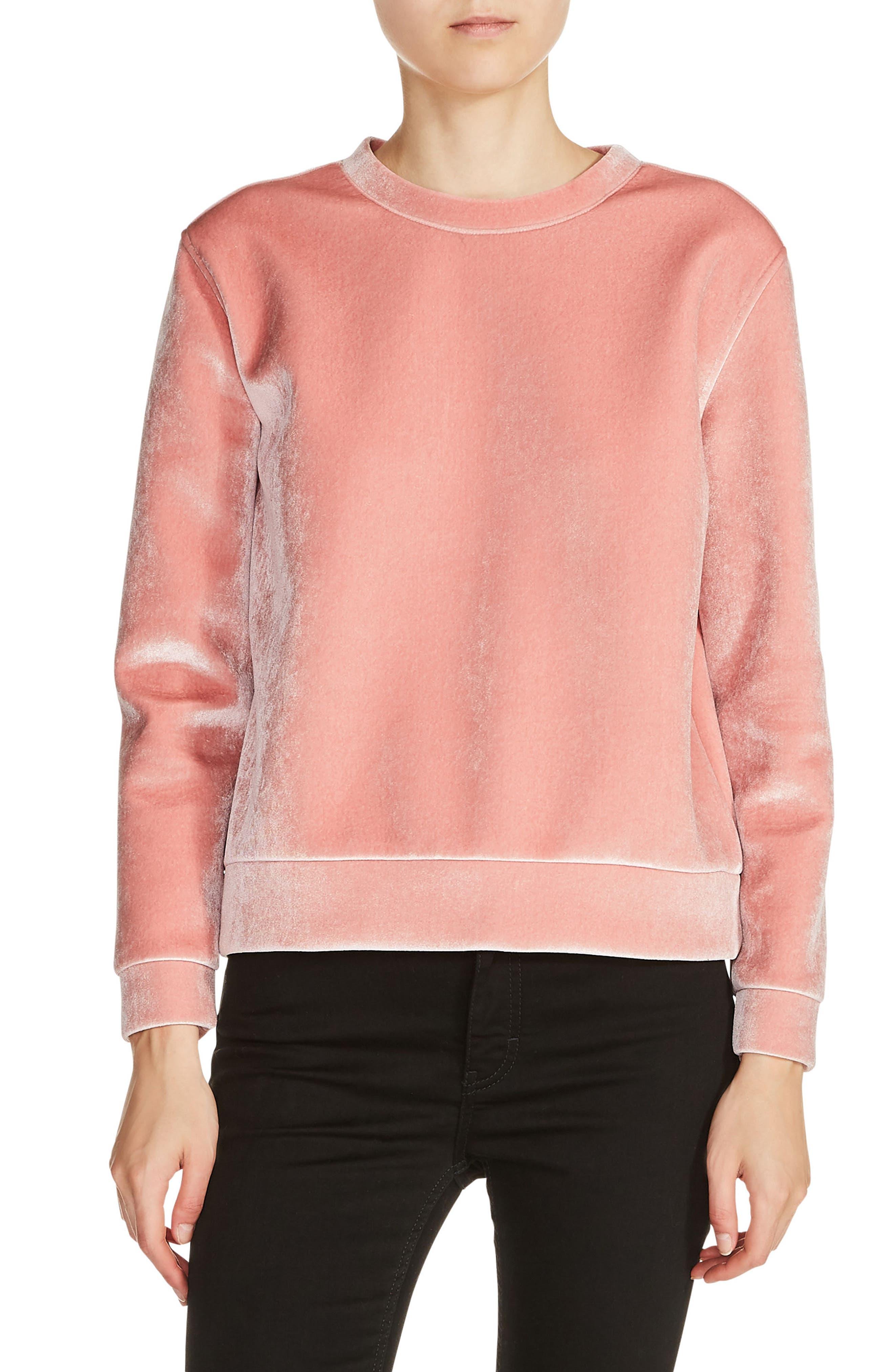 maje Velvet Sweatshirt