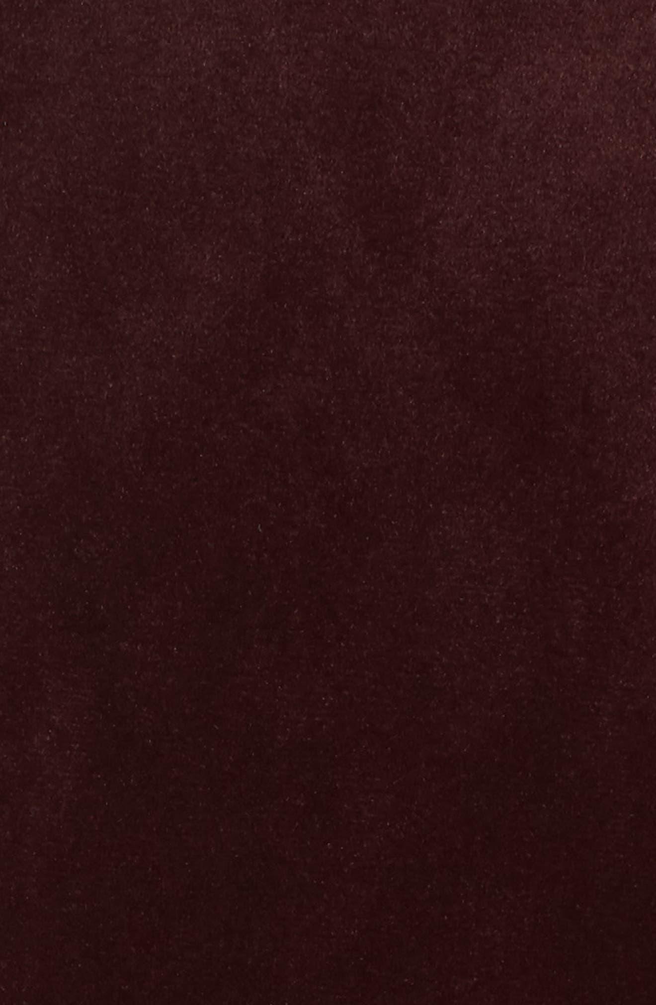 Velvet Blazer,                             Alternate thumbnail 5, color,                             Burgundy