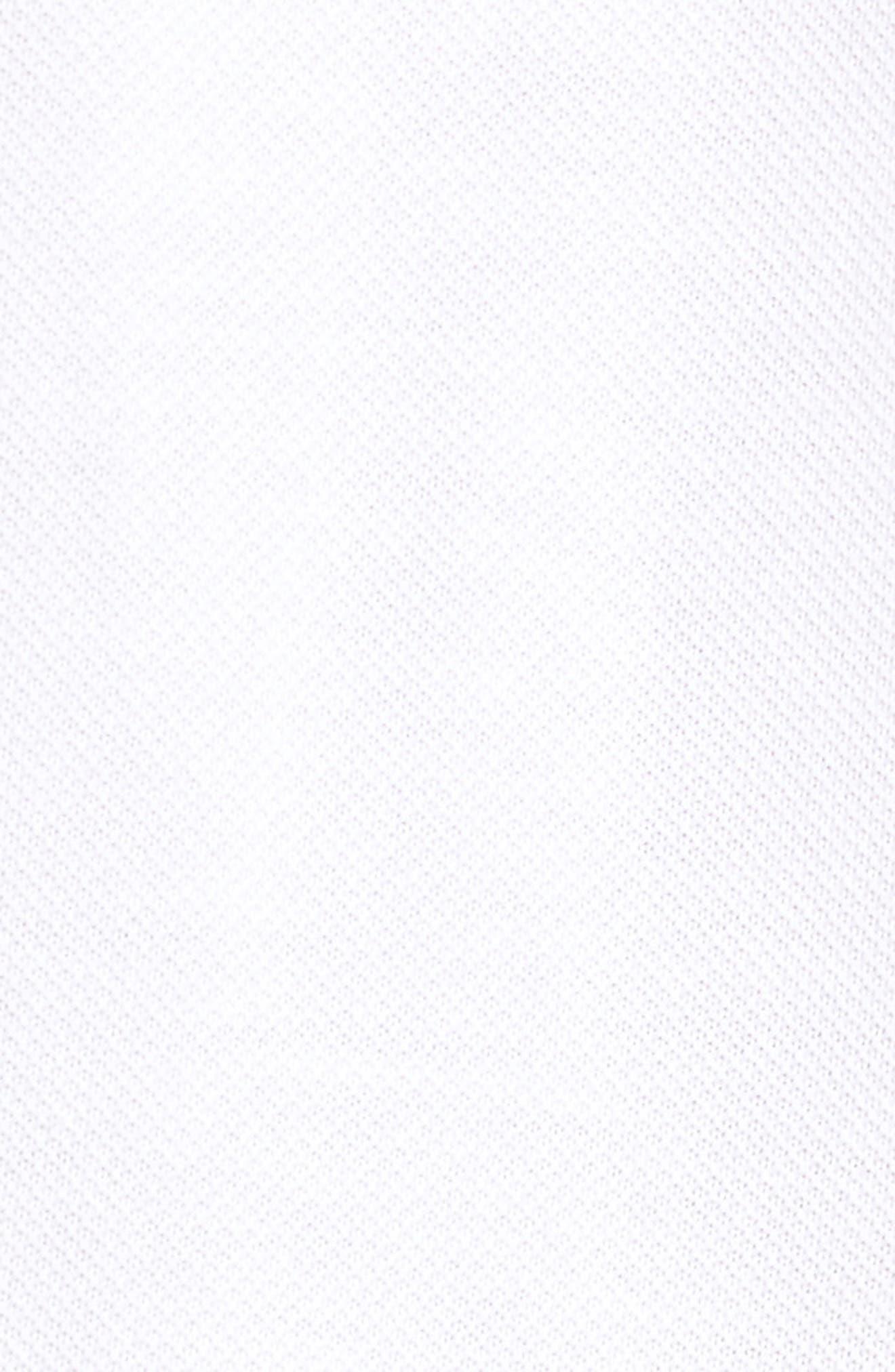 Alternate Image 5  - Nike SB Piqué Polo