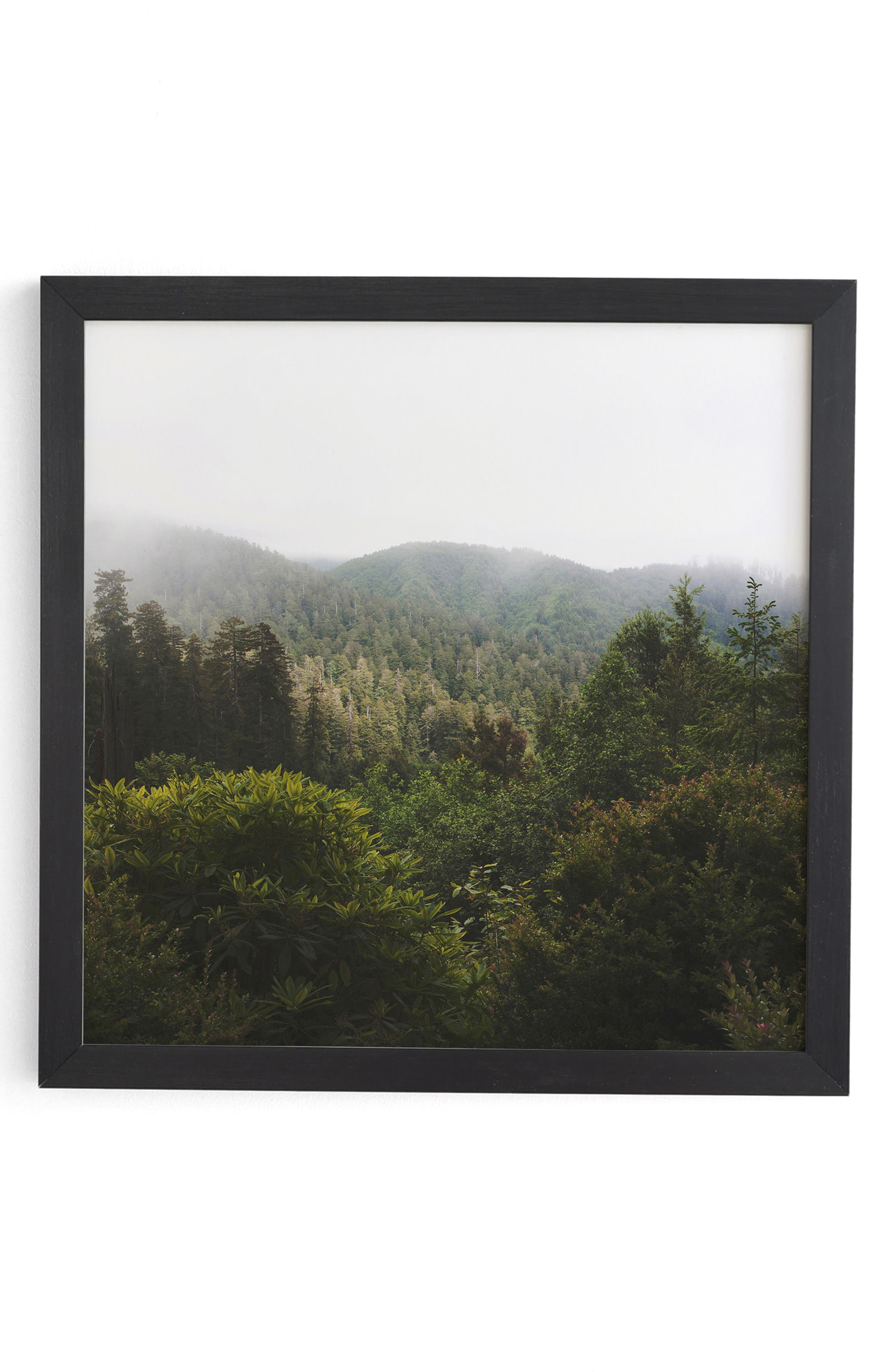 Redwood Forest Framed Wall Art,                             Main thumbnail 1, color,                             Green