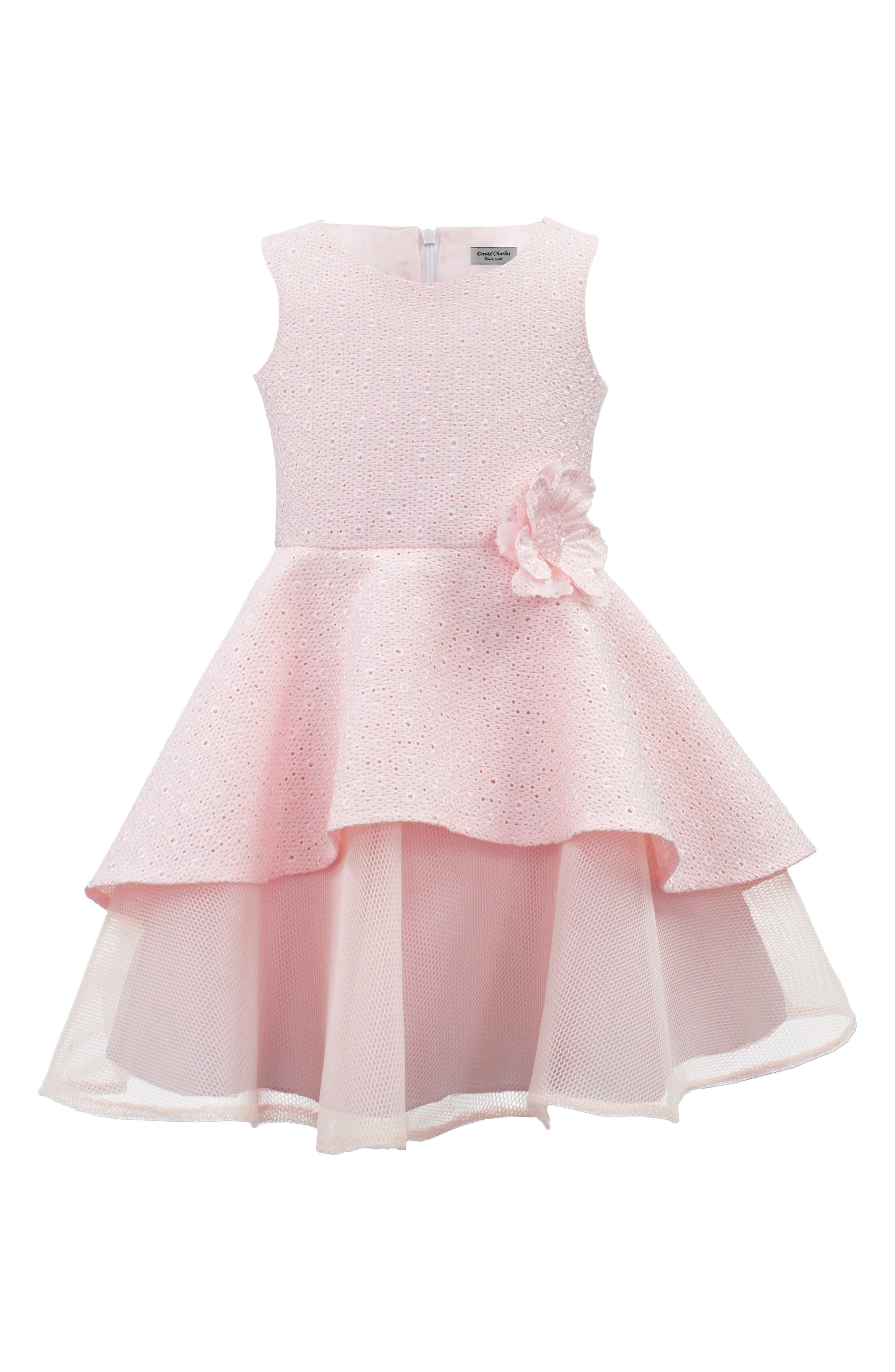 Broderie Anglaise Techno Mesh Dress,                         Main,                         color, Pink
