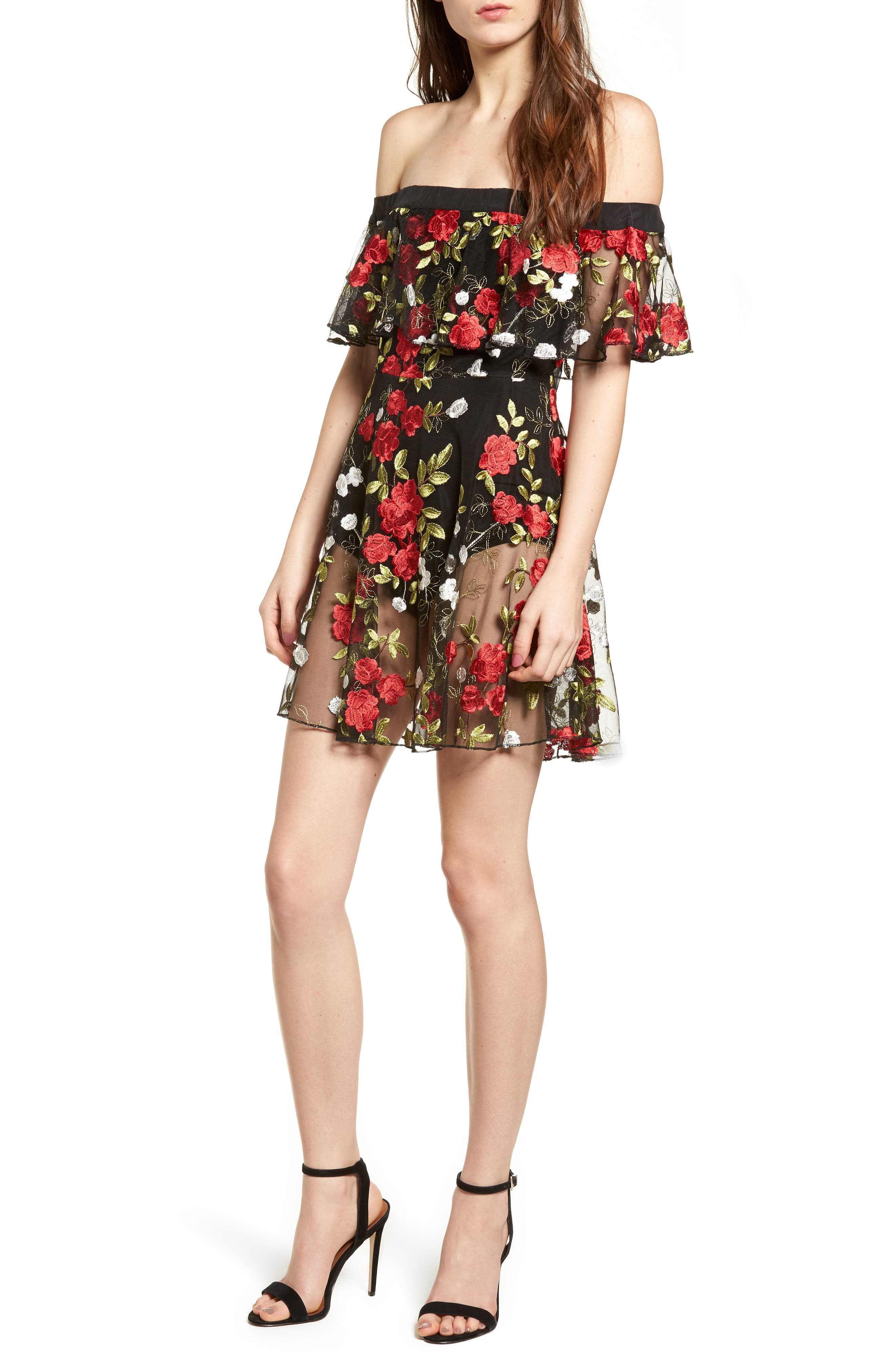 Main Image - Lovers + Friends Erica Sheer Embroidered A-Line Dress