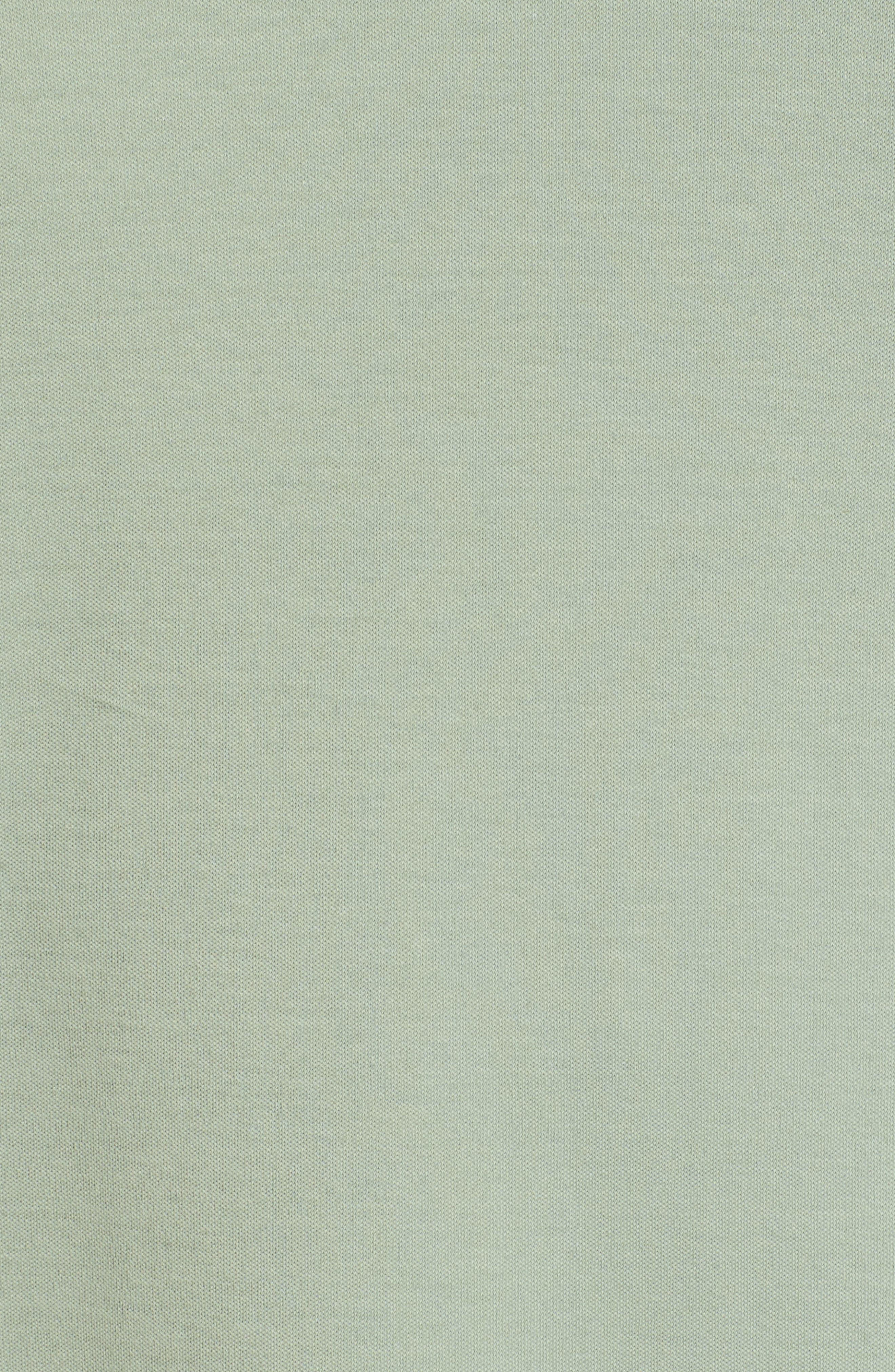 Pug Trim Fit Stripe Polo,                             Alternate thumbnail 5, color,                             Light Green