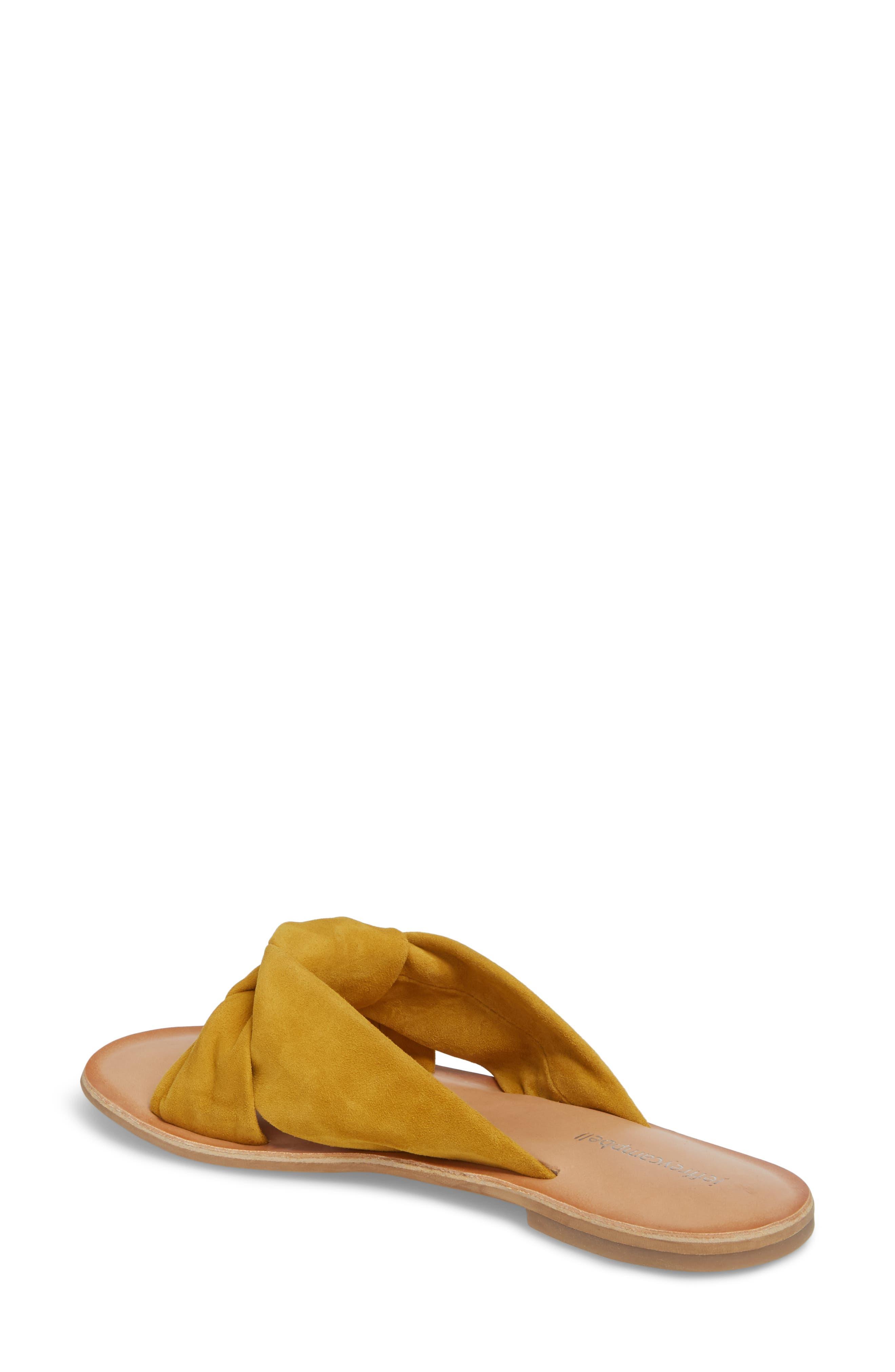 Zocalo Slide Sandal,                             Alternate thumbnail 2, color,                             Mustard Suede
