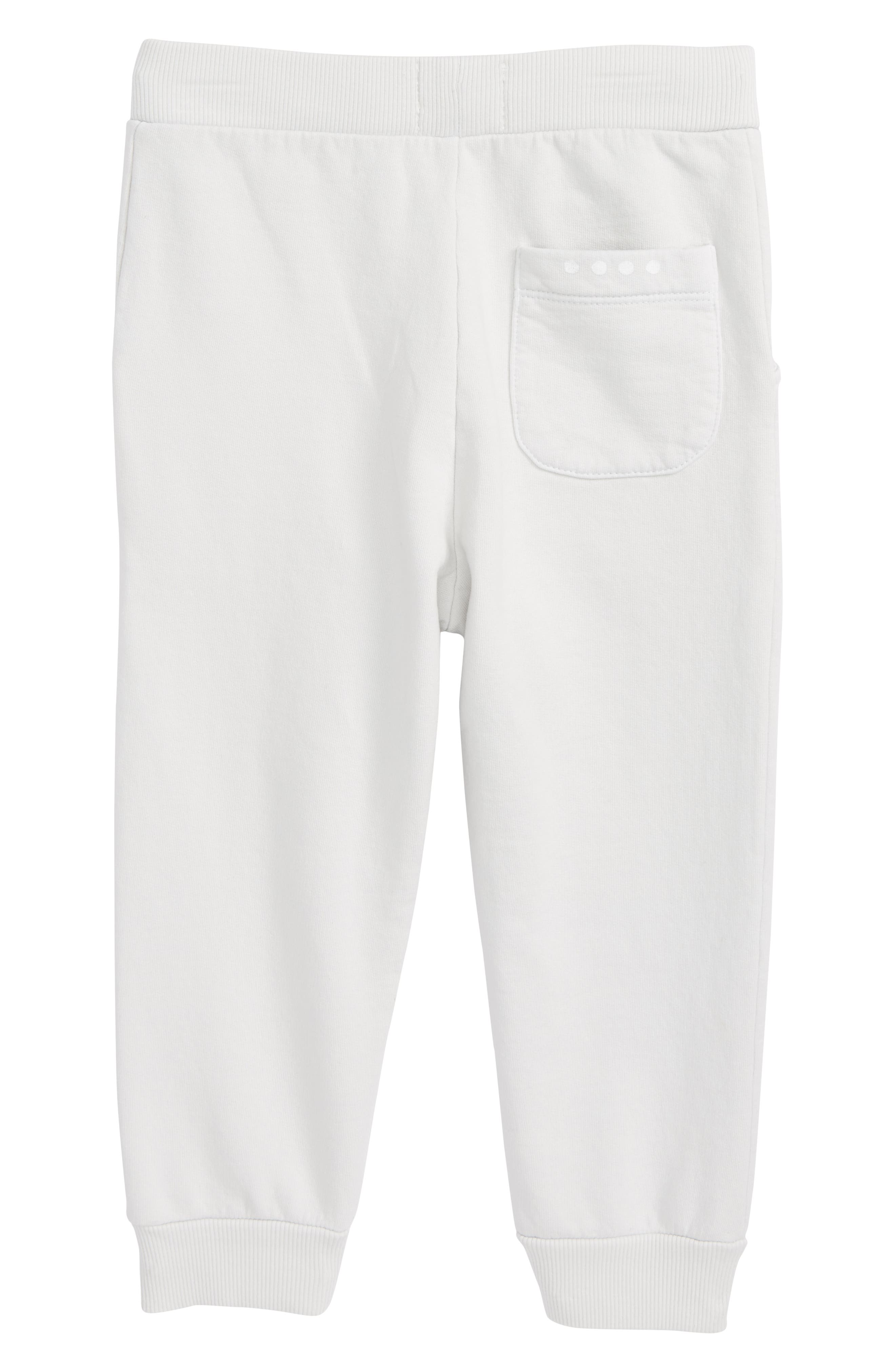 Ryan Jogger Pants,                             Alternate thumbnail 2, color,                             Pebble