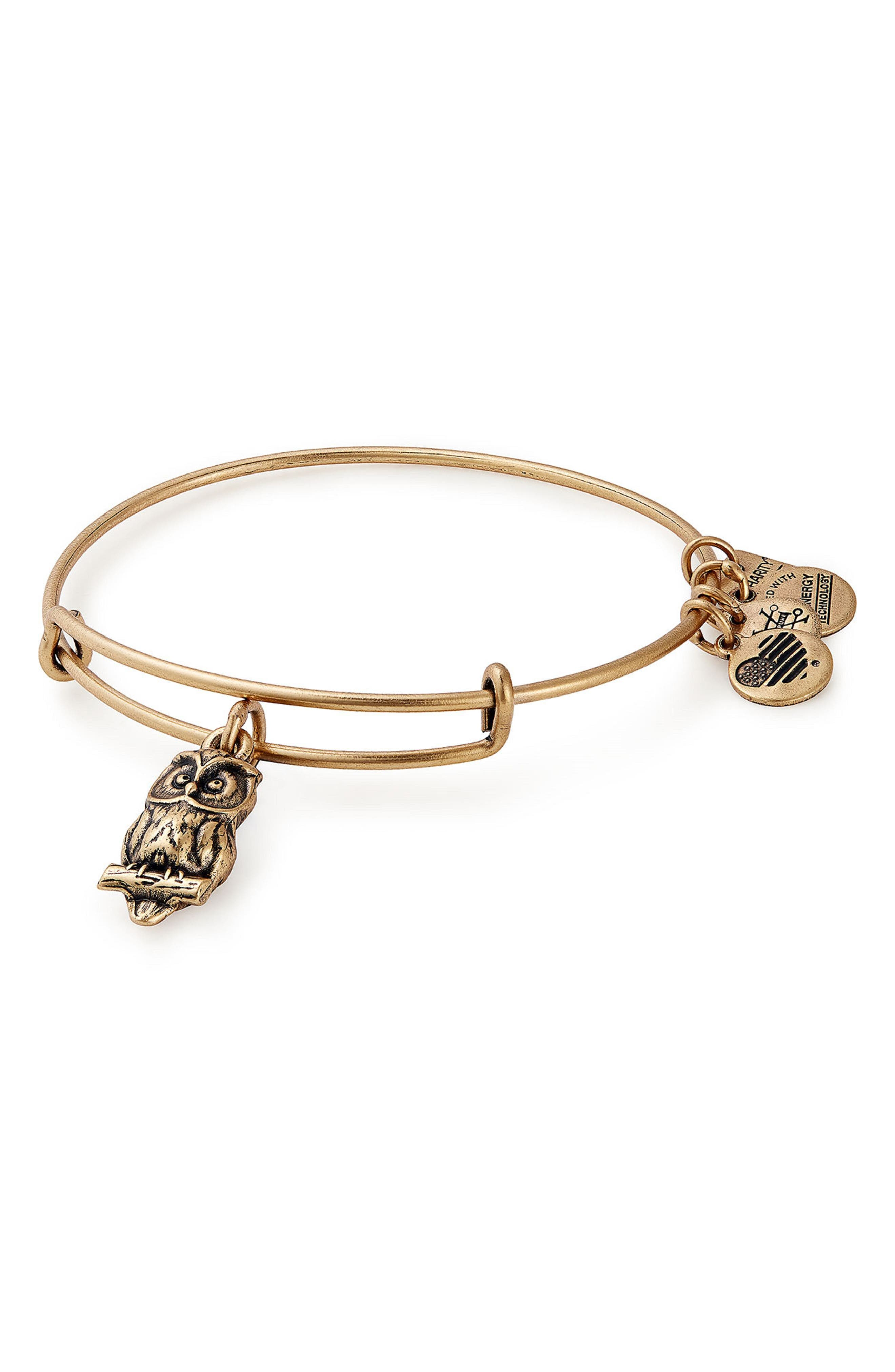 Main Image - Alex and Ani Charity by Design Owl Charm Bracelet