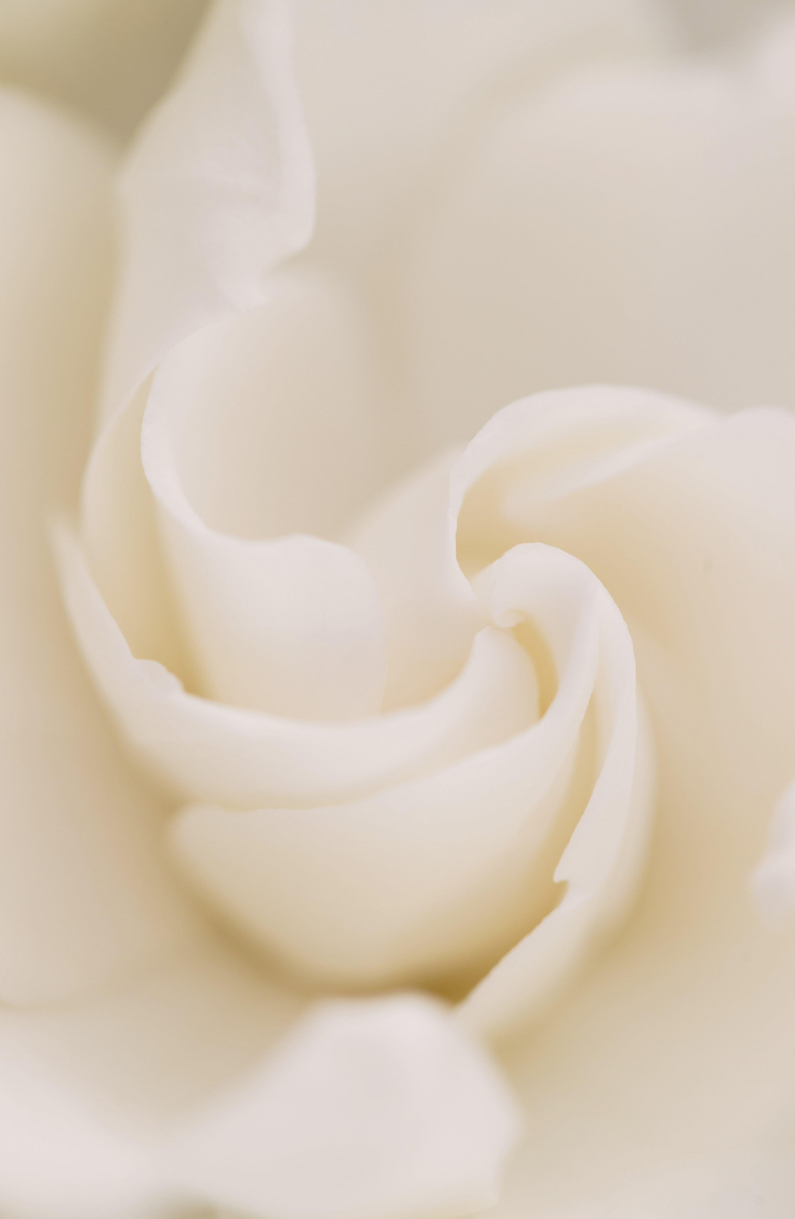 Alternate Image 13  - Cartier 'La Panthère' Eau de Parfum Spray