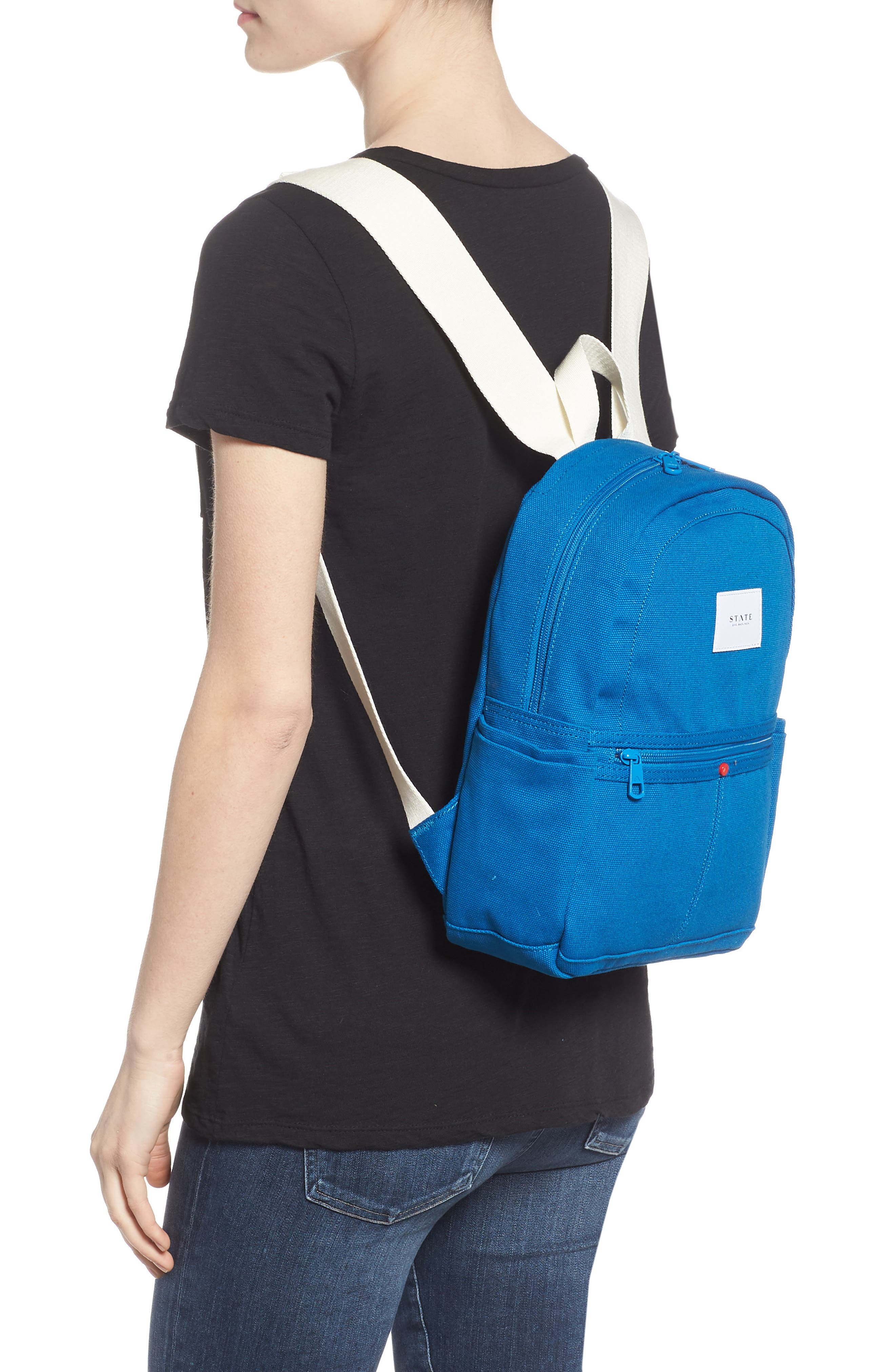 Kensington Mini Kane Canvas Backpack,                             Alternate thumbnail 2, color,                             Pool