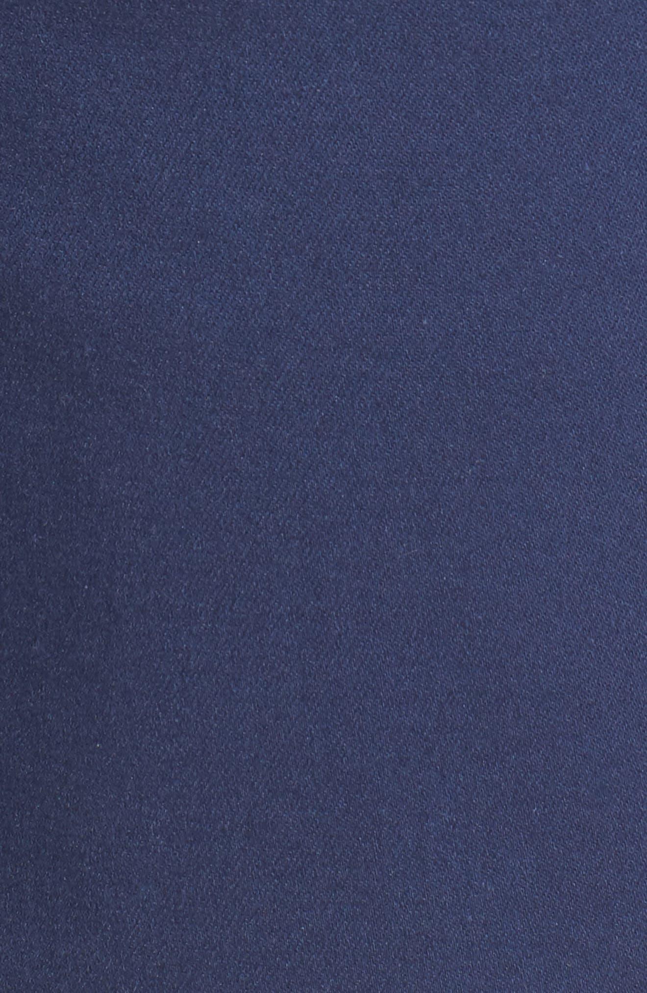 Ab-Solution Stretch Cotton Shorts,                             Alternate thumbnail 5, color,                             Coastal Blue