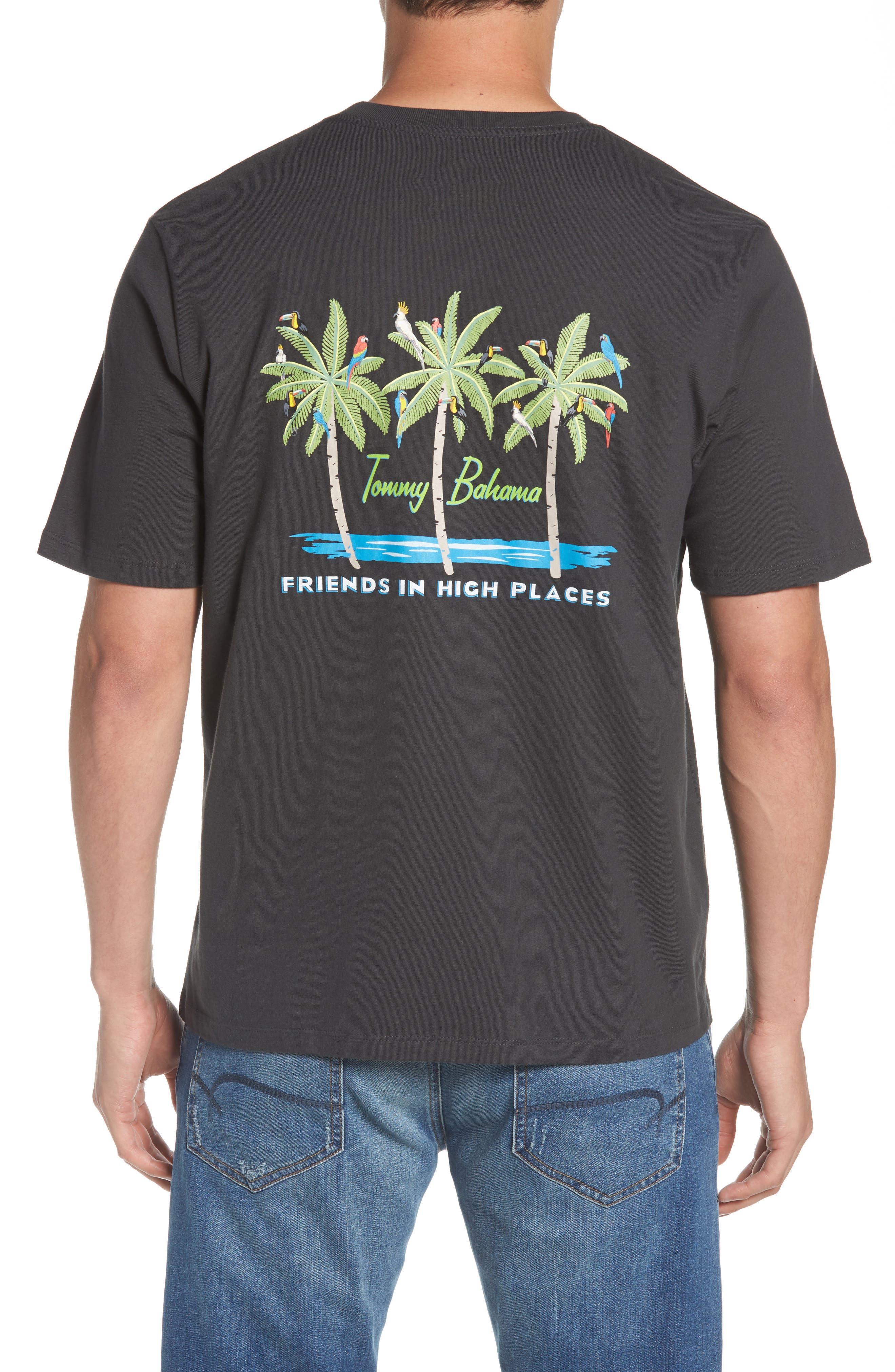 Friends in High Places Graphic T-Shirt,                             Alternate thumbnail 2, color,                             Coal