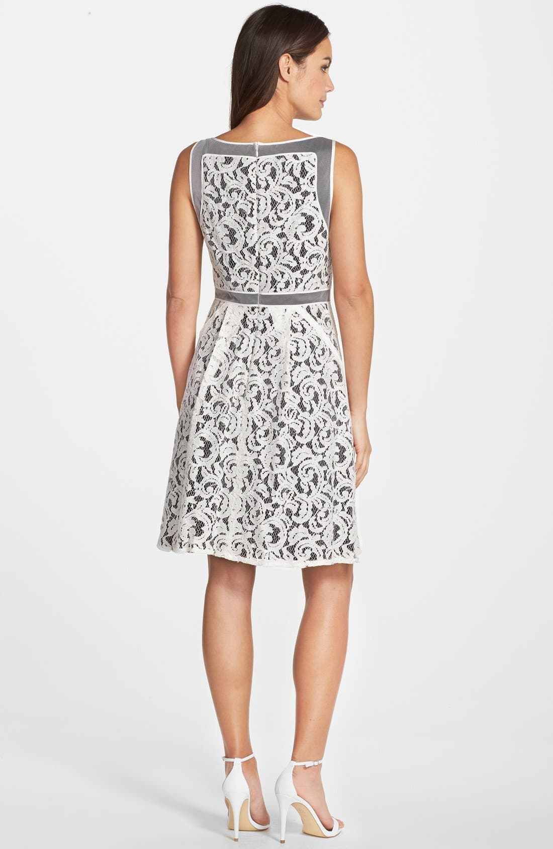 Alternate Image 2  - Adrianna Papell Lace Fit & Flare Dress