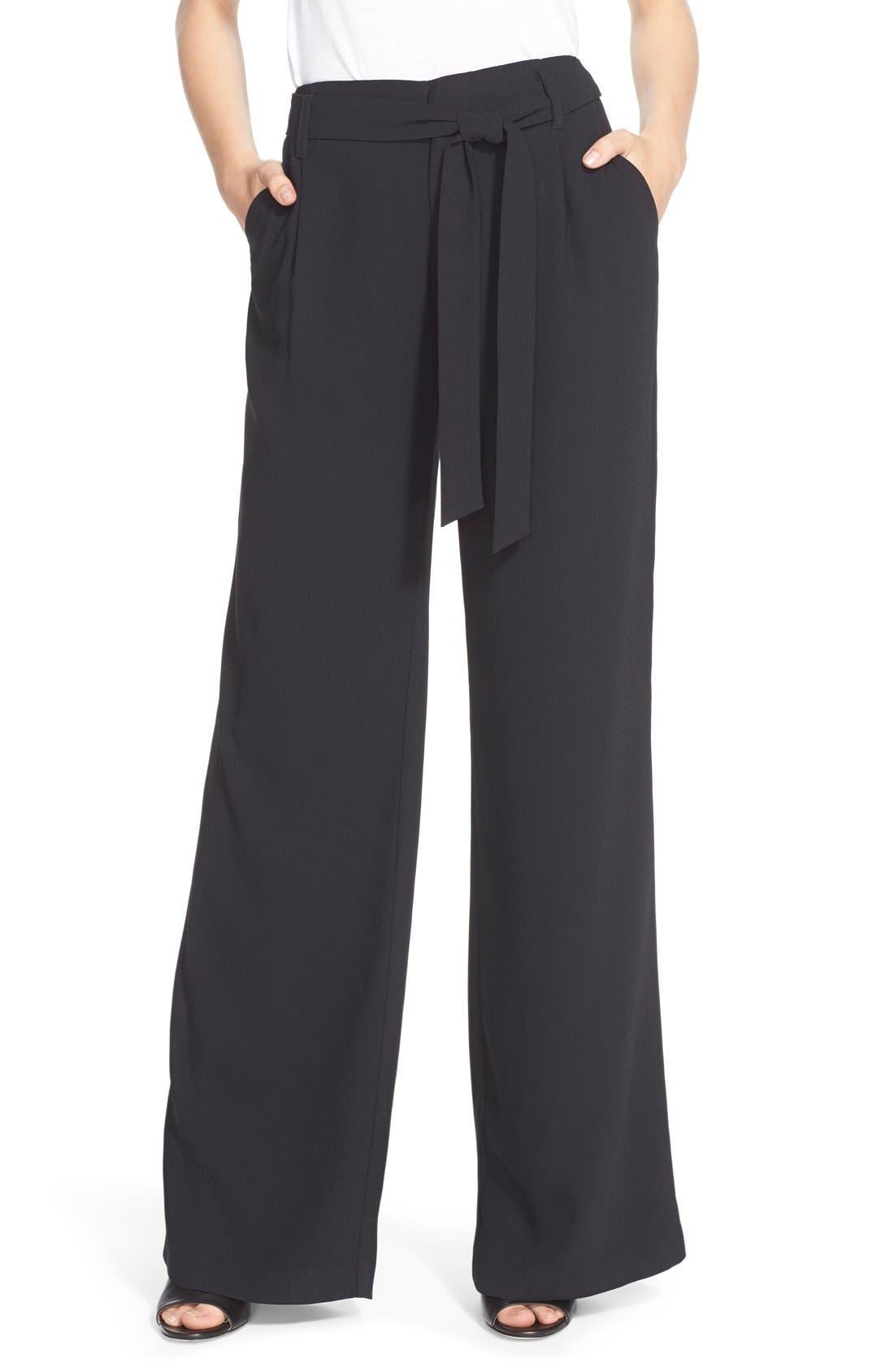 Alternate Image 1 Selected - Joie'Calvina' Wide Leg Pants