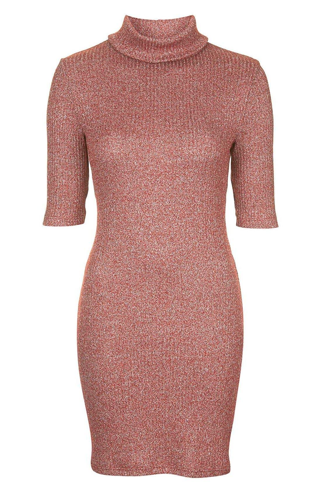 Alternate Image 4  - Topshop Ribbed Turtleneck Dress