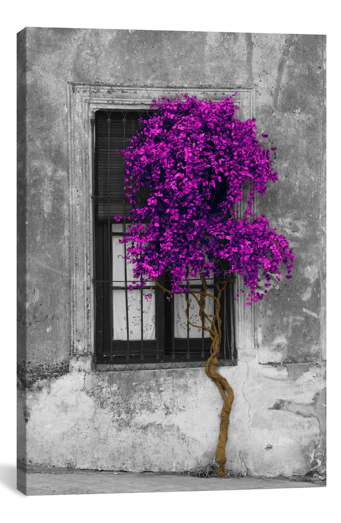 'Tree in Front of Window' Giclée Print Canvas Art,                             Main thumbnail 1, color,                             Grey