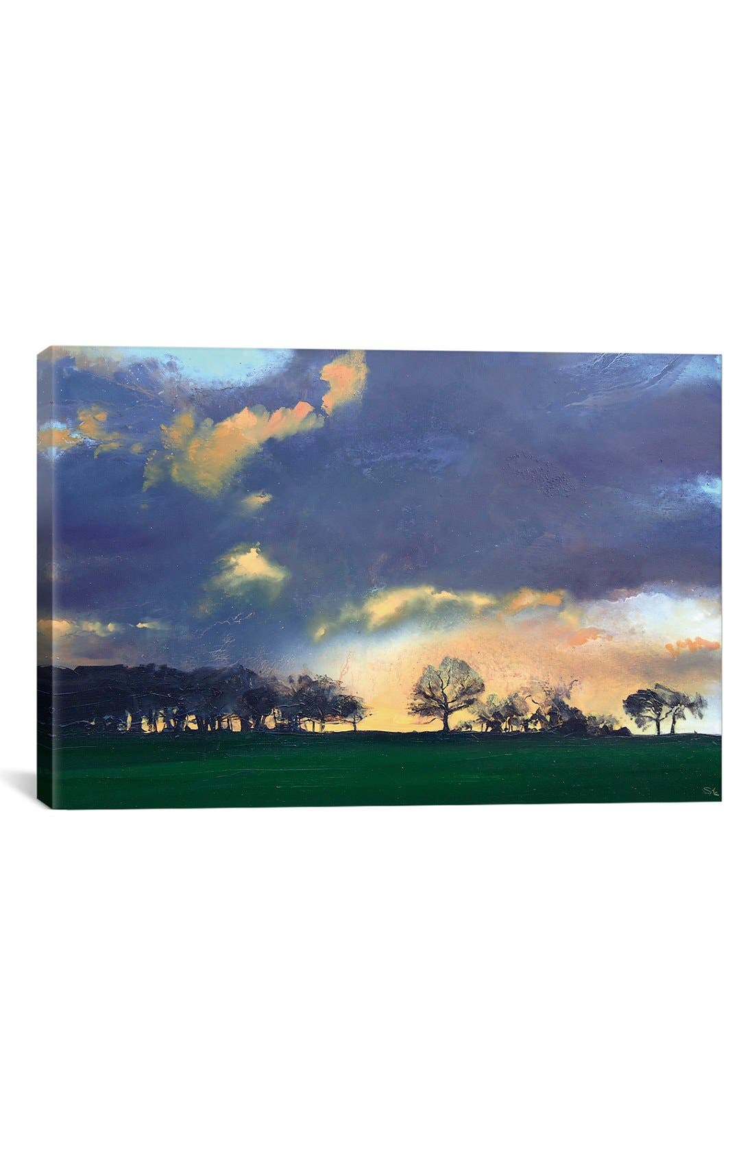 'Rocombe' Giclée Print Canvas Art,                         Main,                         color, Blue
