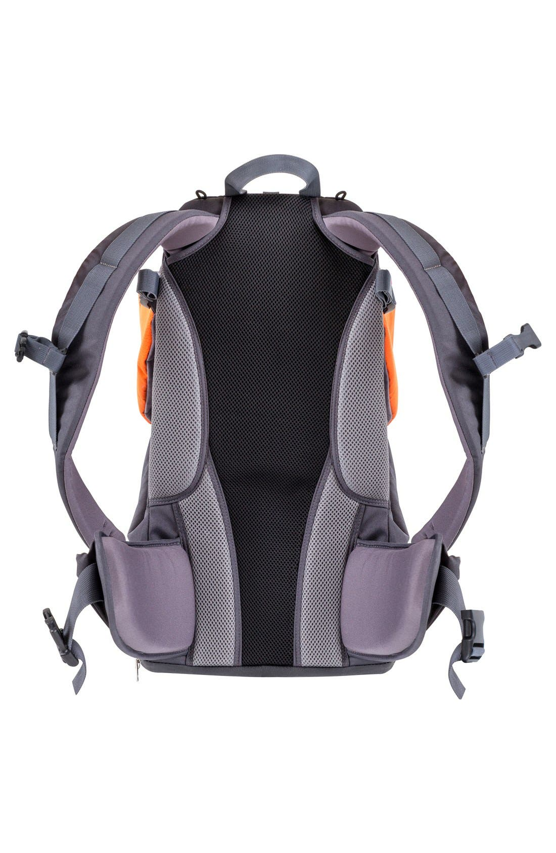 Alternate Image 2  - Phil&Teds Baby Gear  'Parade' Backpack Carrier