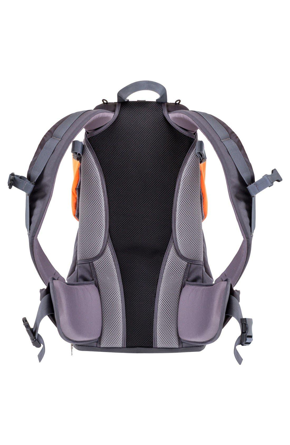 'Parade' Backpack Carrier,                             Alternate thumbnail 2, color,                             Orange/ Grey