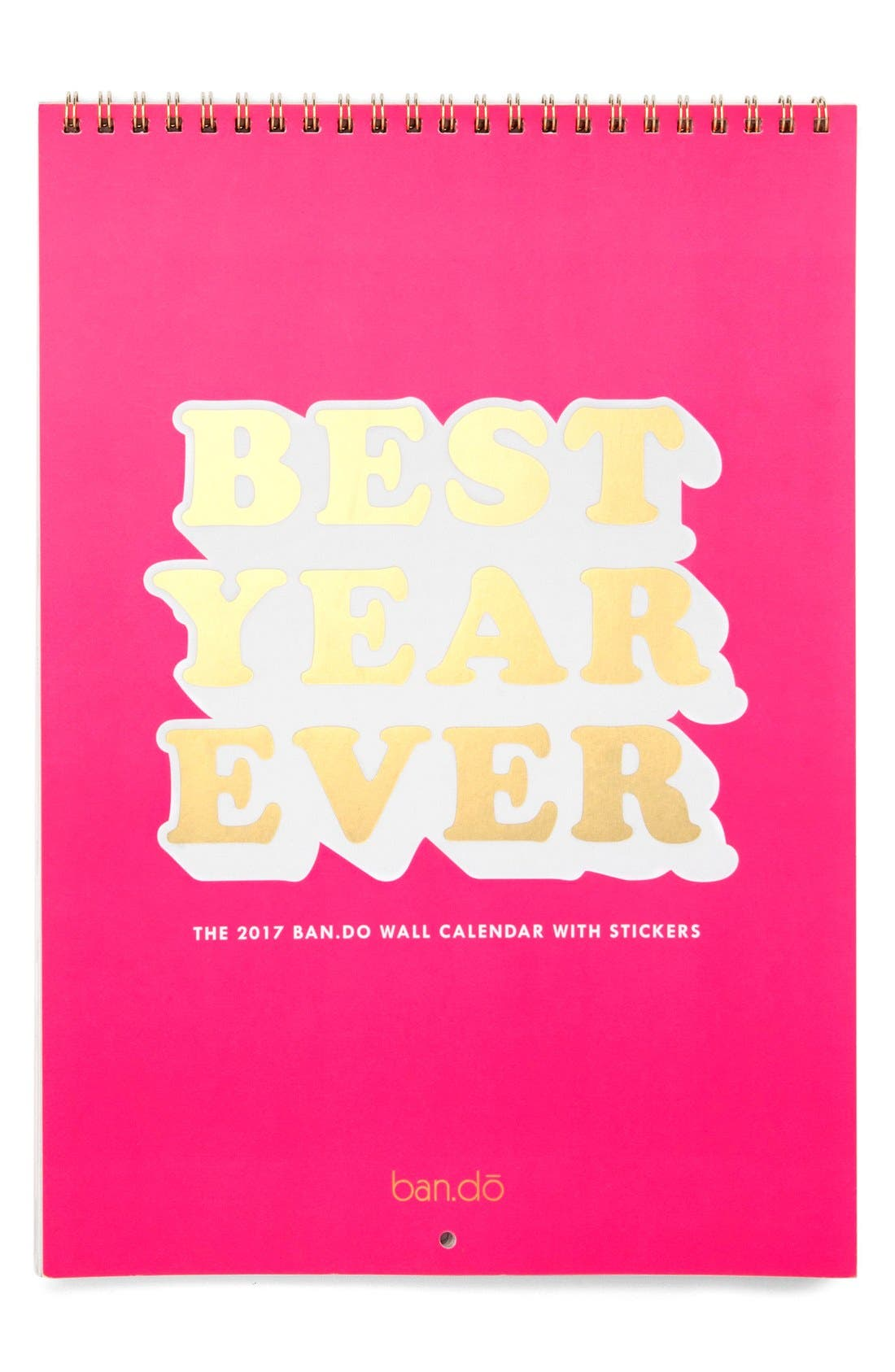 Alternate Image 1 Selected - ban.do 'Best Year Ever' 2017 Wall Calendar