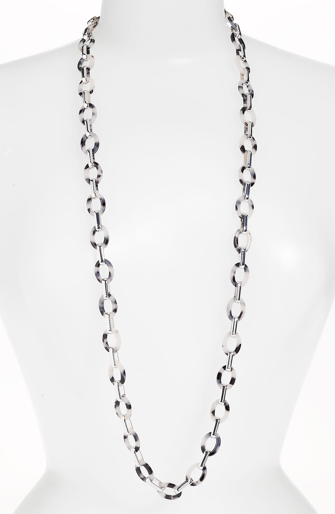 Alternate Image 1 Selected - Anne Klein 'Belden Place' Long Link Necklace