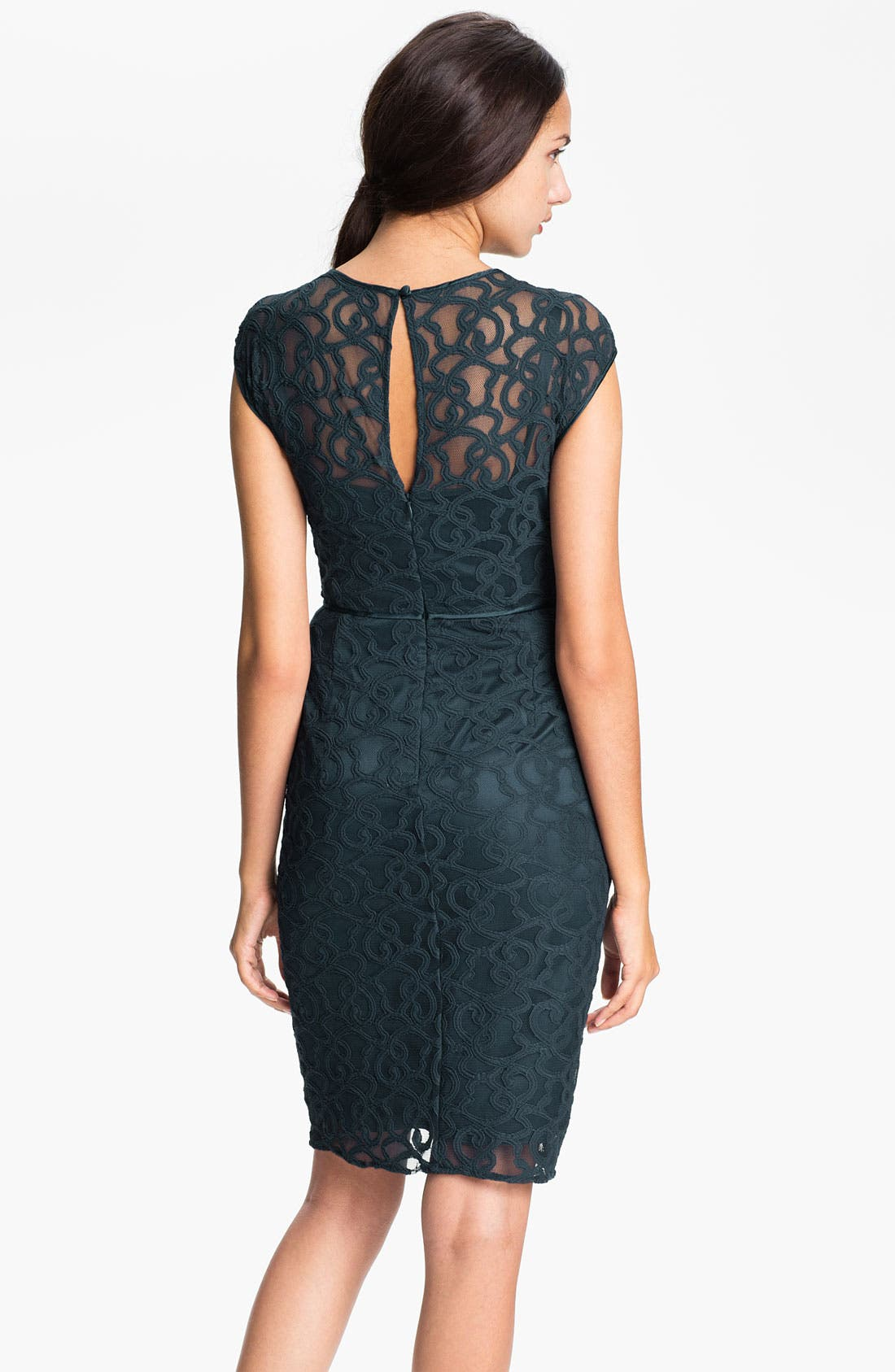 Alternate Image 3  - Adrianna Papell Lace & Mesh Sheath Dress