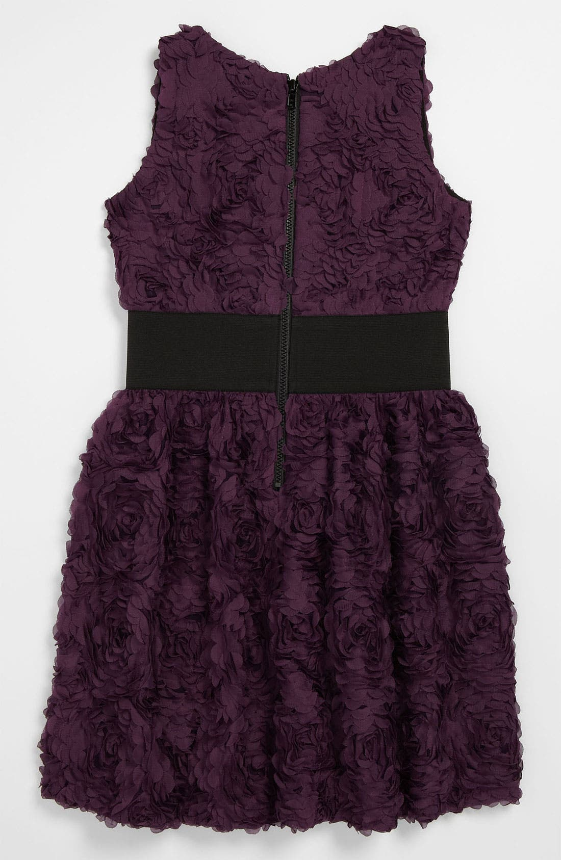 Zoe Ltd 'Roses' Dress,                             Alternate thumbnail 2, color,                             Purple