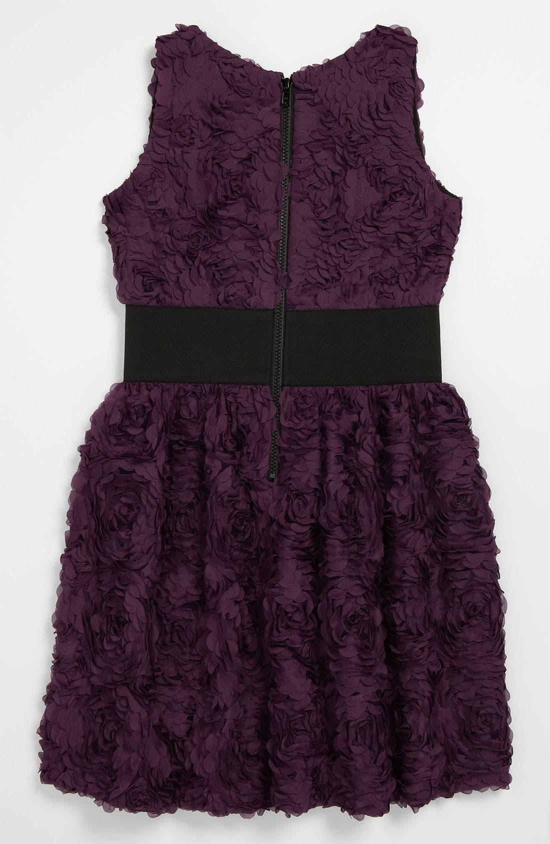 Alternate Image 2  - Zoe Ltd 'Roses' Dress (Big Girls)