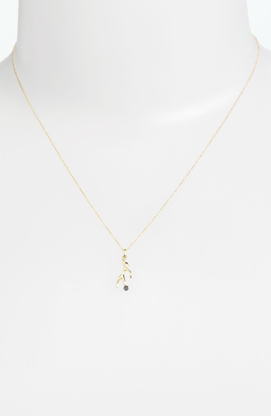 Alternate Image 2  - Whitney Stern Antler Pendant Necklace